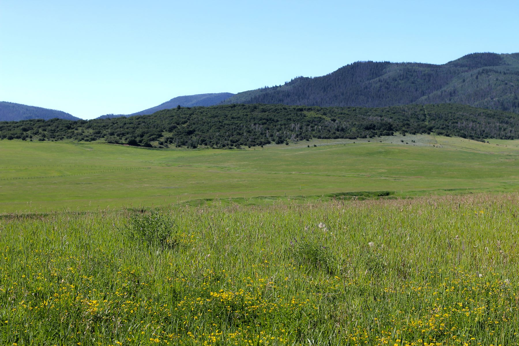 Additional photo for property listing at 50+ Acres at Lake Catamount 31725 County Road 14C Steamboat Springs, Colorado 80487 Estados Unidos