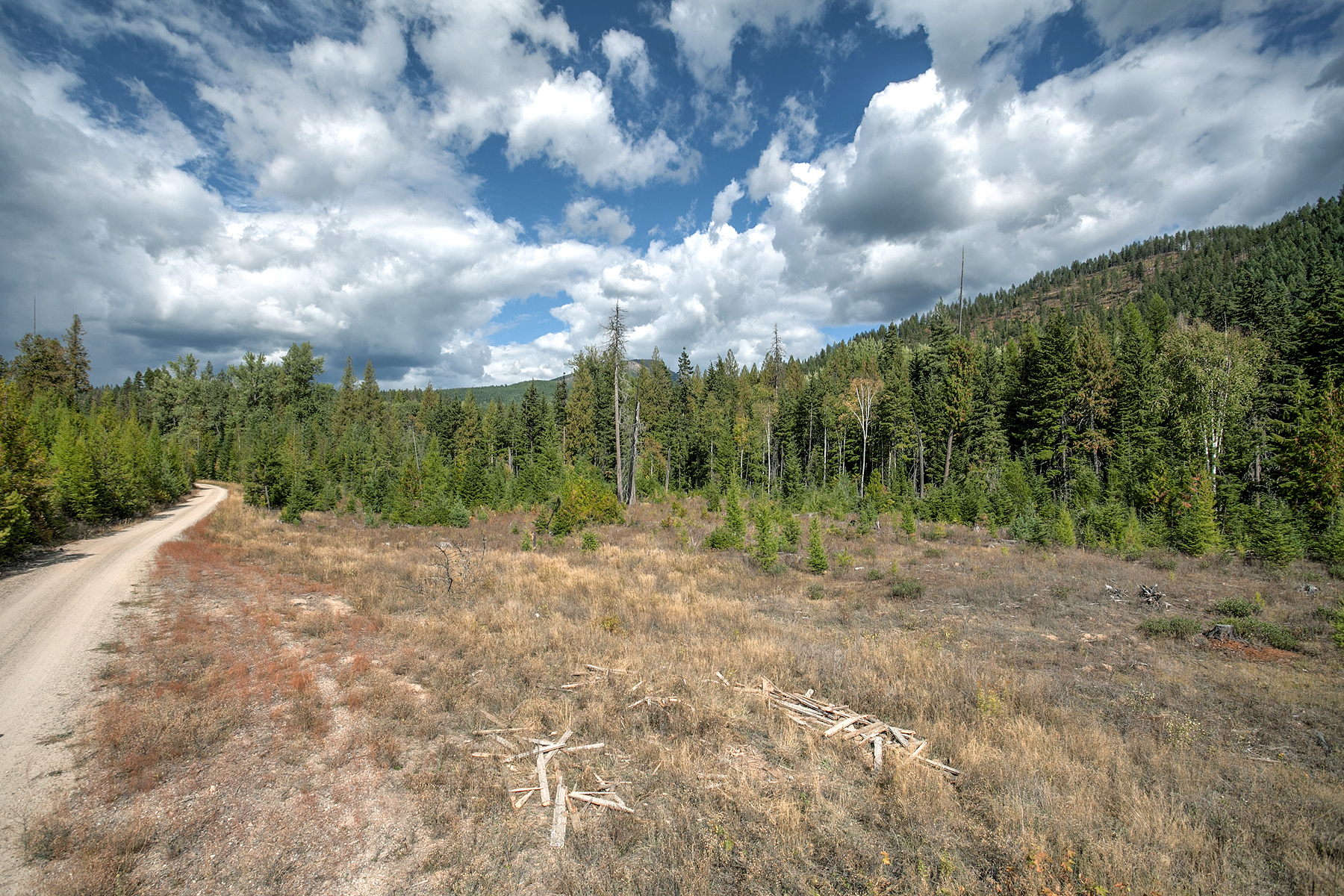 Land for Sale at BUSHWOOD ESTATES Lot 7 1406 Lost Creek Rd Coolin, Idaho, 83821 United States