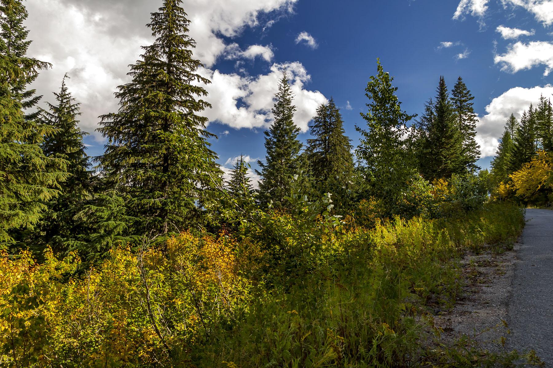 Land für Verkauf beim Two adjoining Schweitzer Ski Resort lots NNA Telemark Road Sandpoint, Idaho, 83864 Vereinigte Staaten