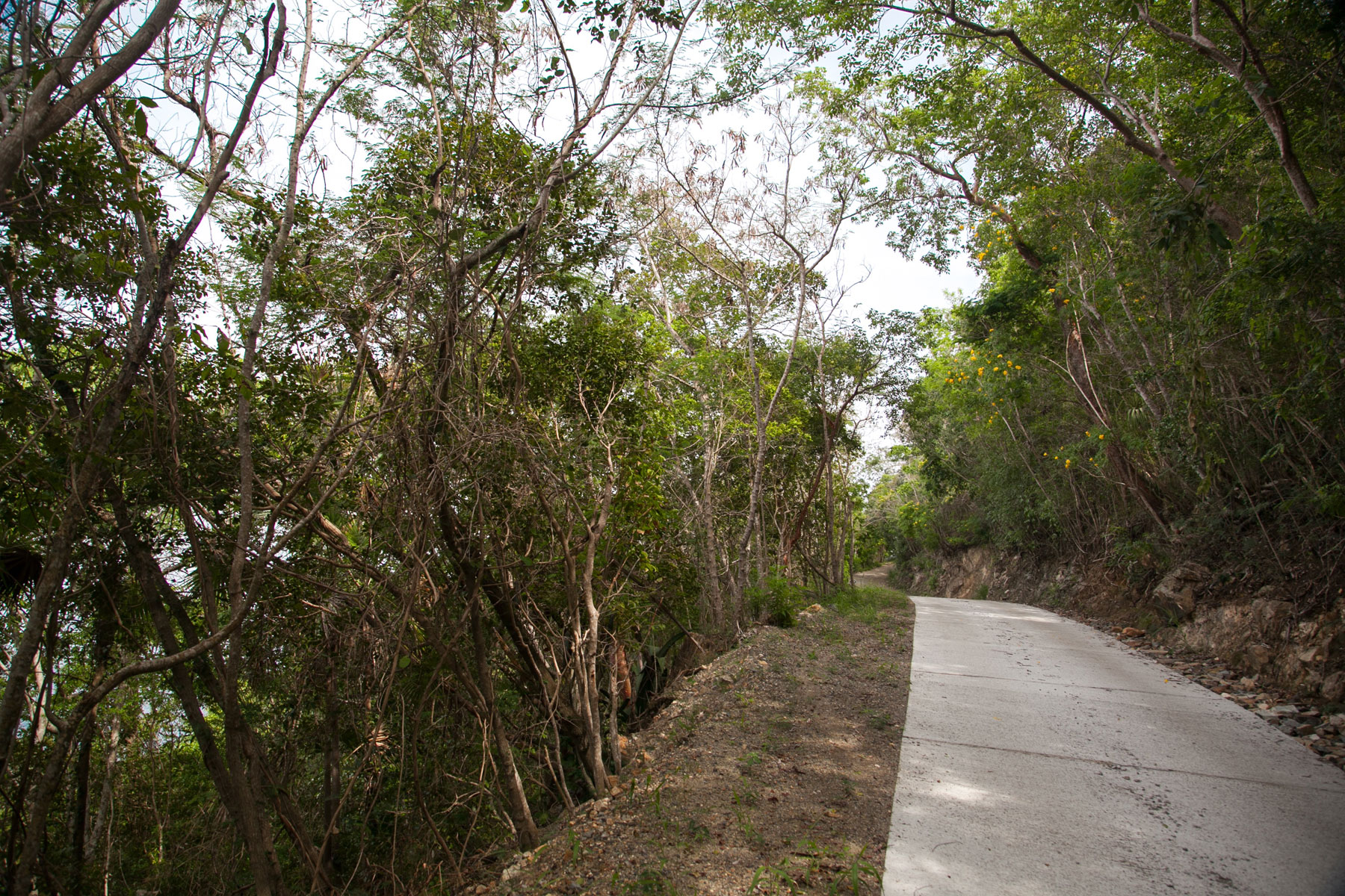 Additional photo for property listing at West End Land 216 Belmont, Tortola Quần Đảo Virgin Thuộc Anh