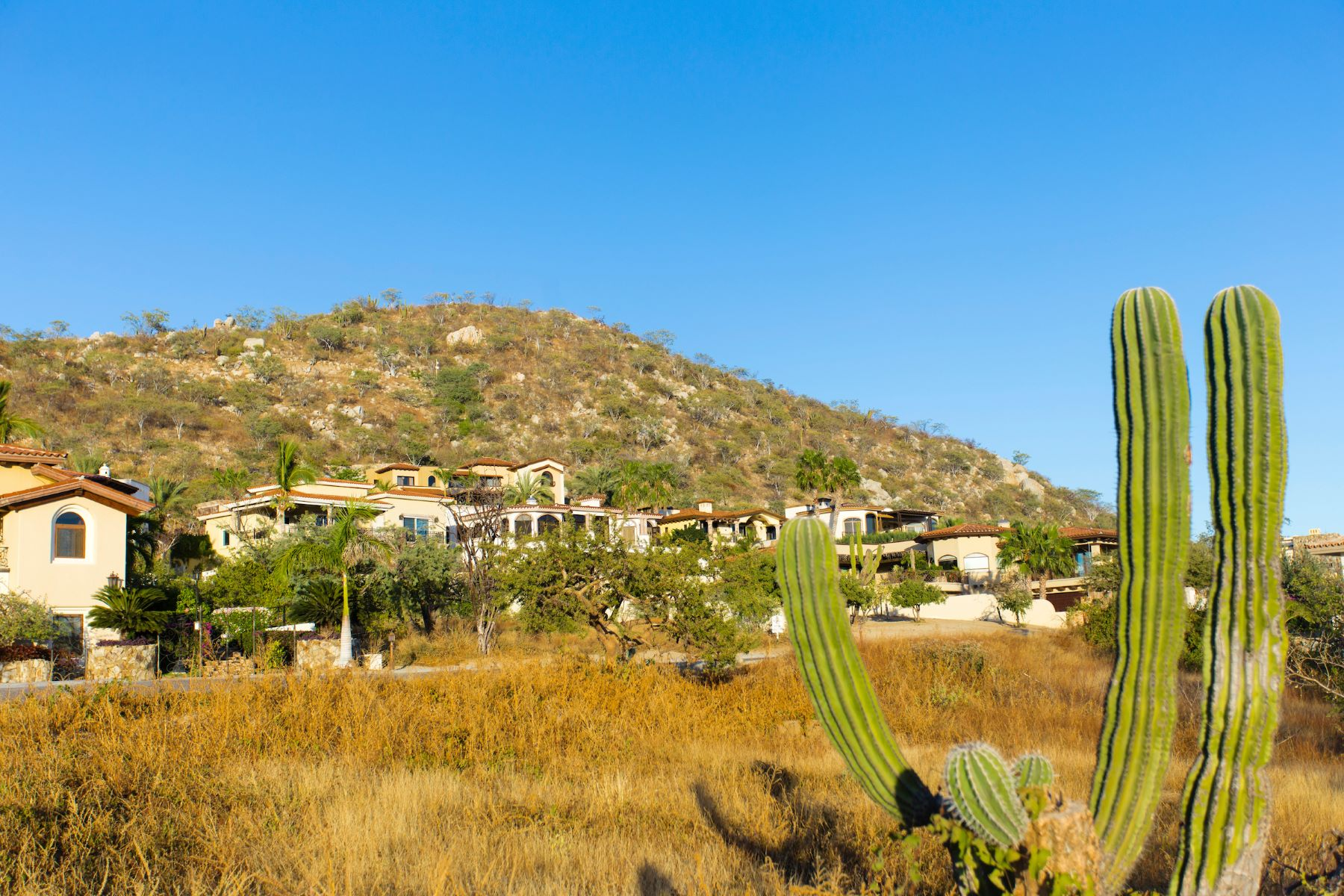 Additional photo for property listing at Lote D-6 Rancho Paraiso Cabo San Lucas, Baja California Sur Mexico