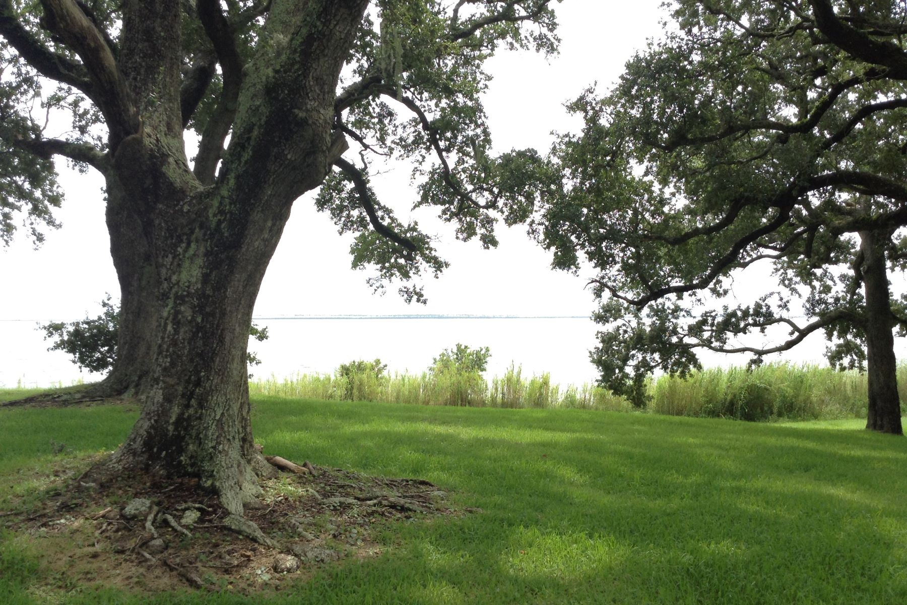Additional photo for property listing at 110 Shearwater Drive  Ocean Springs, Mississippi 39564 United States