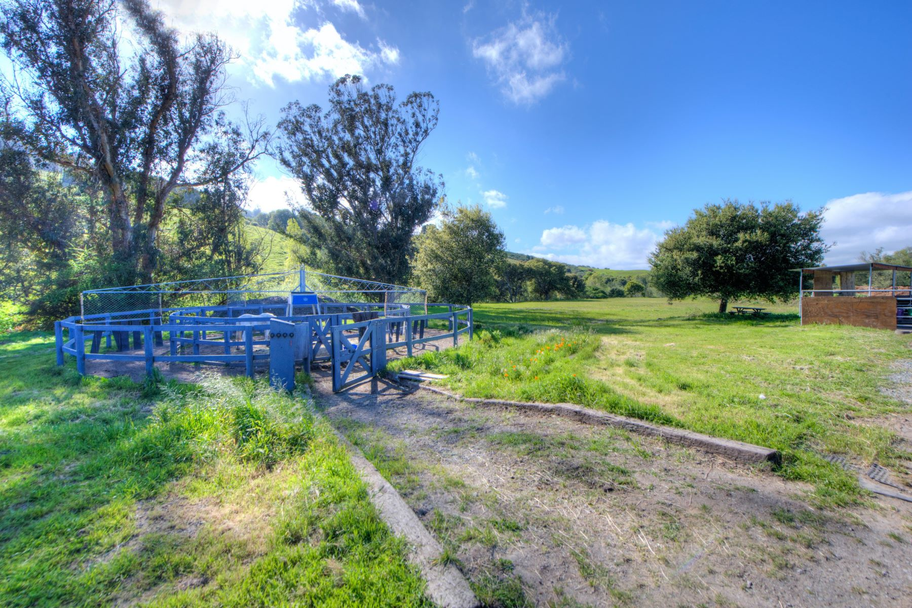 Additional photo for property listing at Equestrian Estate 3431 Nicasio Valley Rd Nicasio, Kalifornien 94946 Vereinigte Staaten