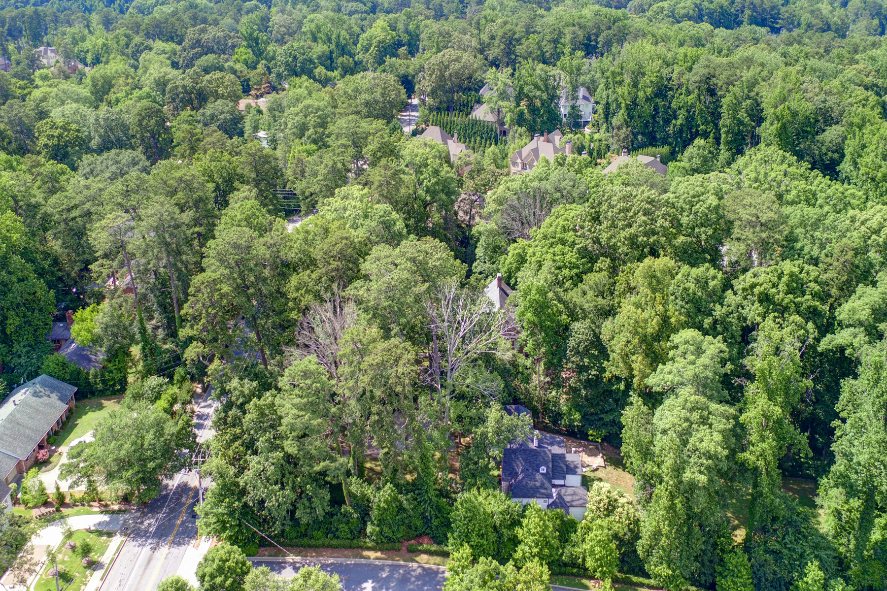 Additional photo for property listing at 3.3 Acre Buckhead Estate 3745 Wieuca Road Atlanta, Джорджия 30342 Соединенные Штаты