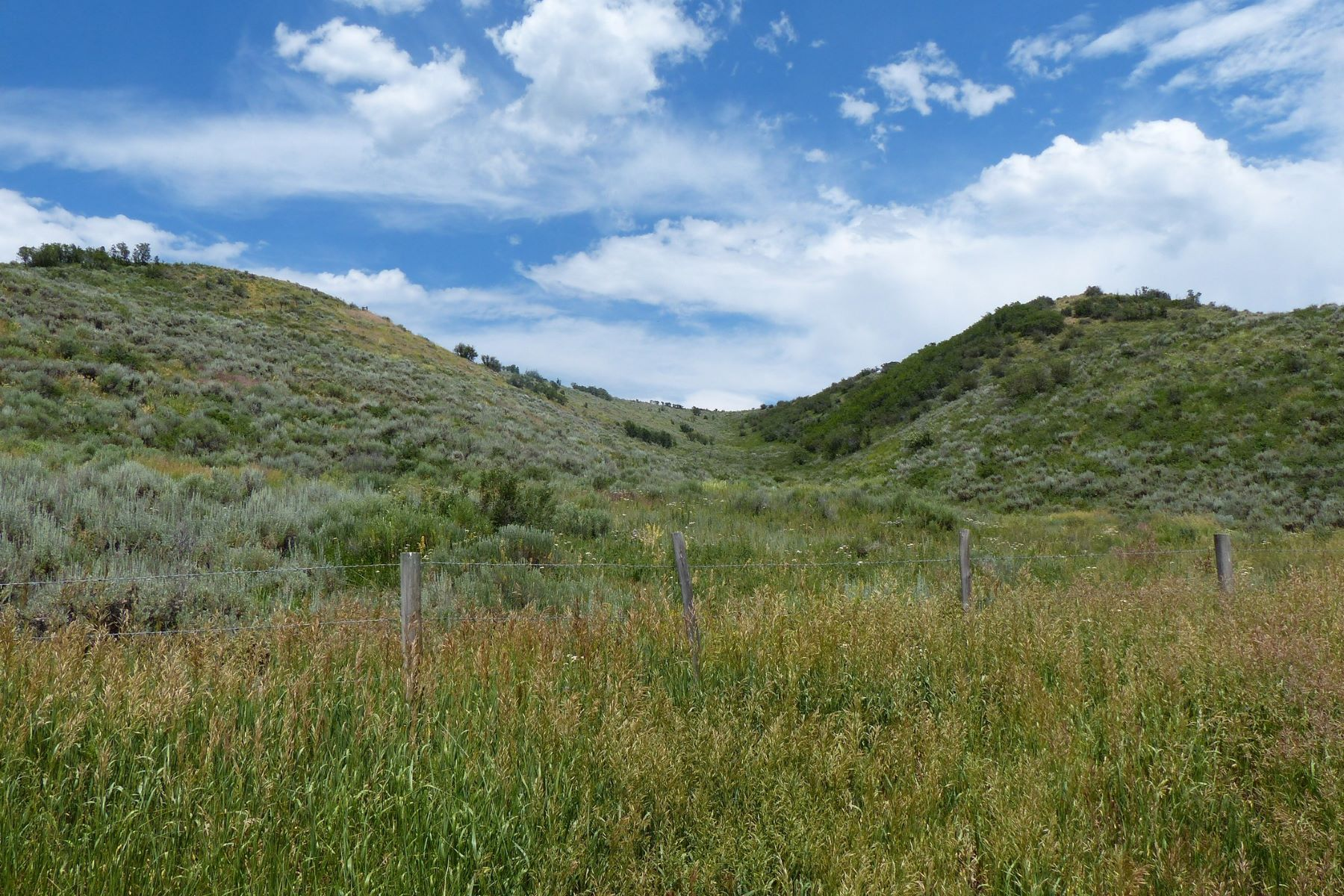 Additional photo for property listing at 35 ACRES WITH TOP OF THE WORLD VIEWS 42240 RCR 46 Steamboat Springs, Colorado 80487 Estados Unidos