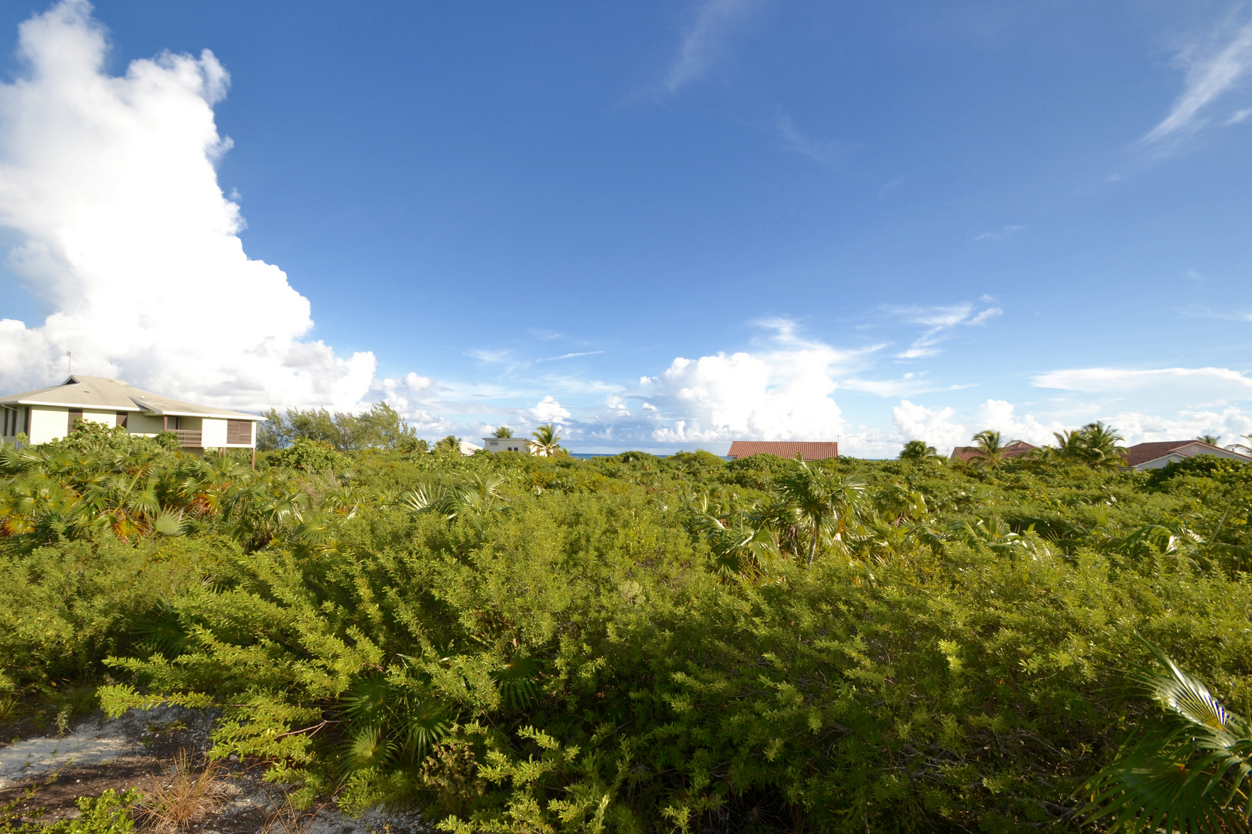 Land for Sale at North Caicos Land Oceanview Whitby, North Caicos TCI Turks And Caicos Islands