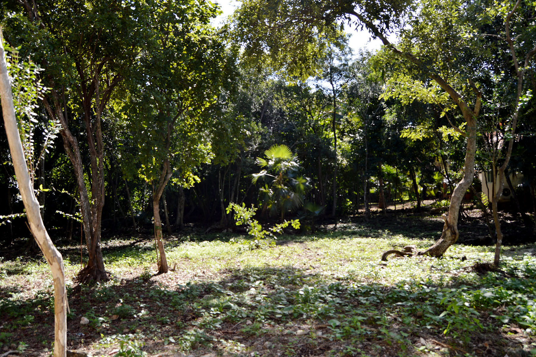 Land for Sale at 107 CLUB REAL RESIDENTIAL LOT 107 Club Real Residential Lot Retorno Copan Playa Del Carmen, Quintana Roo 77710 Mexico