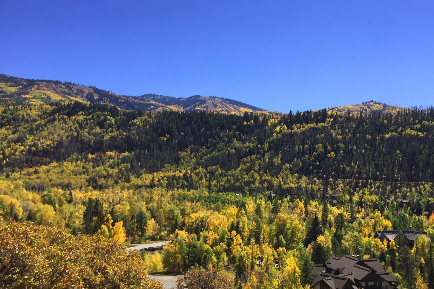 Terrain pour l Vente à Heavenly View Lot 2815 Heavenly View Steamboat Springs, Colorado 80487 États-Unis