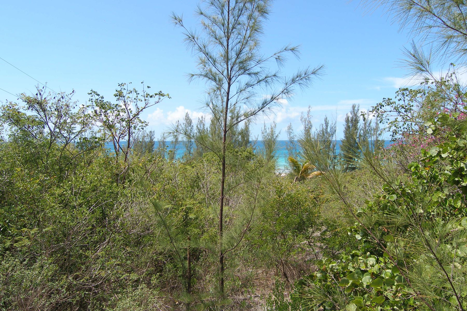 Additional photo for property listing at Beach Front Possibilities James Cistern, Eleuthera Bahamas