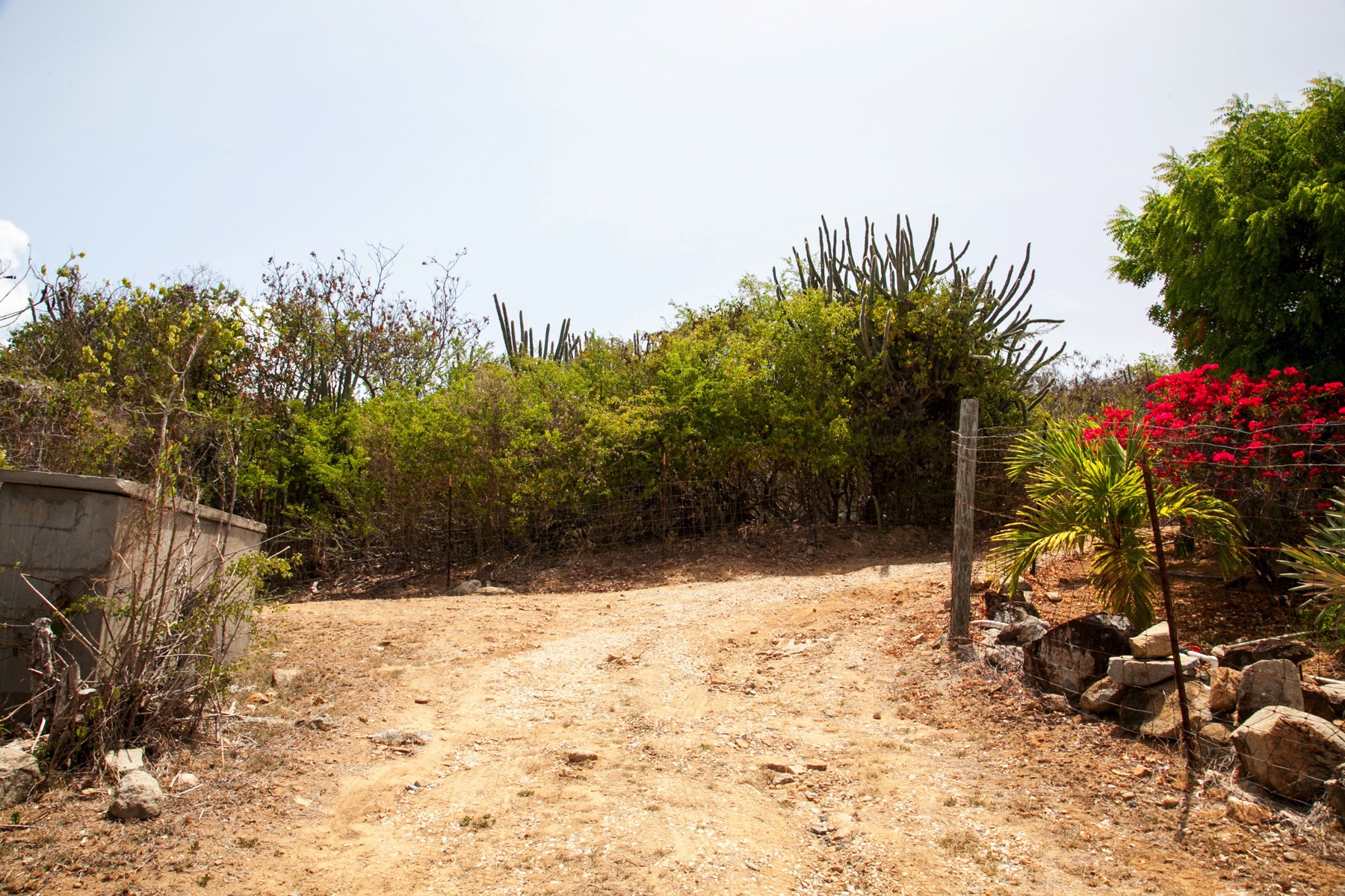 Additional photo for property listing at Coppermine Ridge Land Spanish Town, Virgin Gorda British Virgin Islands