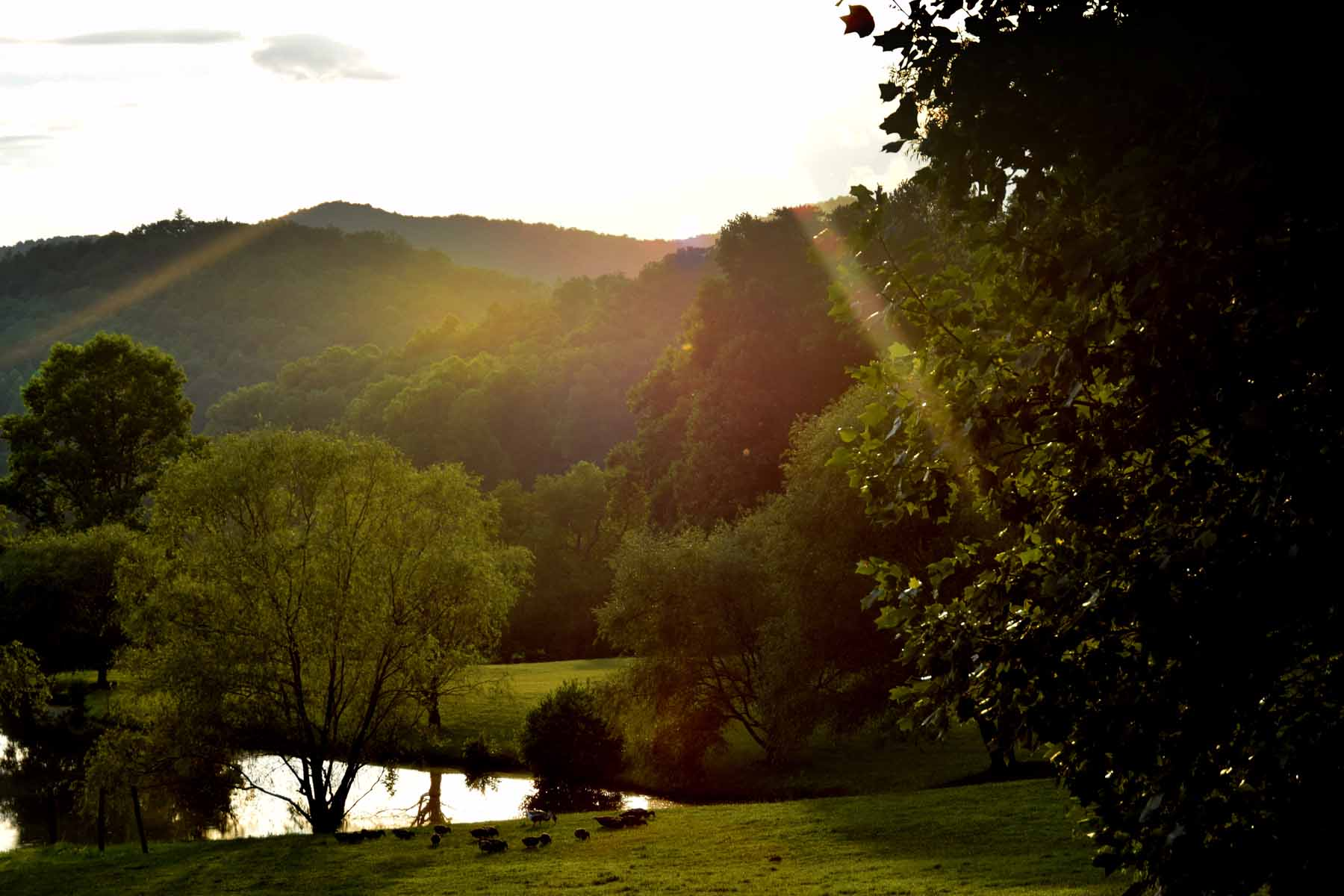 土地 为 销售 在 Ridgetop parcel with Phenomenal valley and mountain views. 0 Canaan Valley Road Lot H Suches, 乔治亚州, 30572 美国
