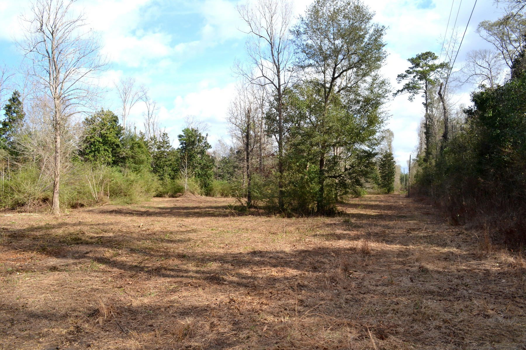 Additional photo for property listing at 16009 Riverside Rd 16009 Riverside Rd Covington, Louisiana 70435 United States