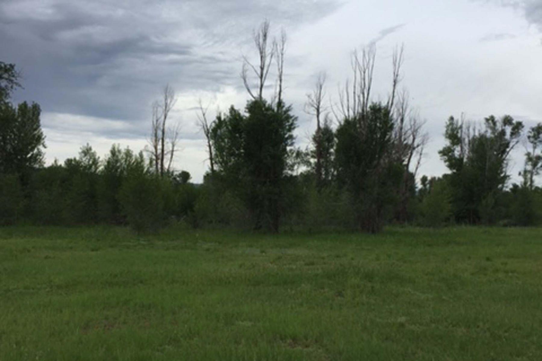 Arazi için Satış at Nicest Neighborhood 1187 Miller Ranch Road Driggs, Idaho, 83422 Jackson Hole, Amerika Birleşik Devletleri