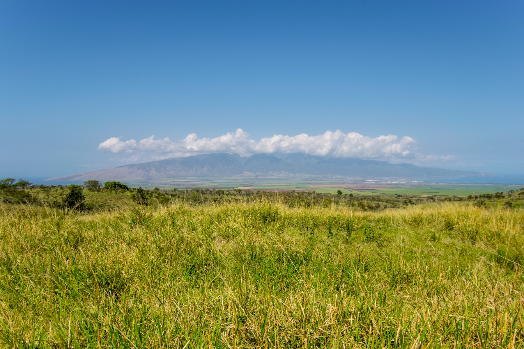 Terreno por un Venta en Magnificent 464 Acre Maui Ranch Property 0 Kula Highway Kula, Hawaii, 96790 Estados Unidos