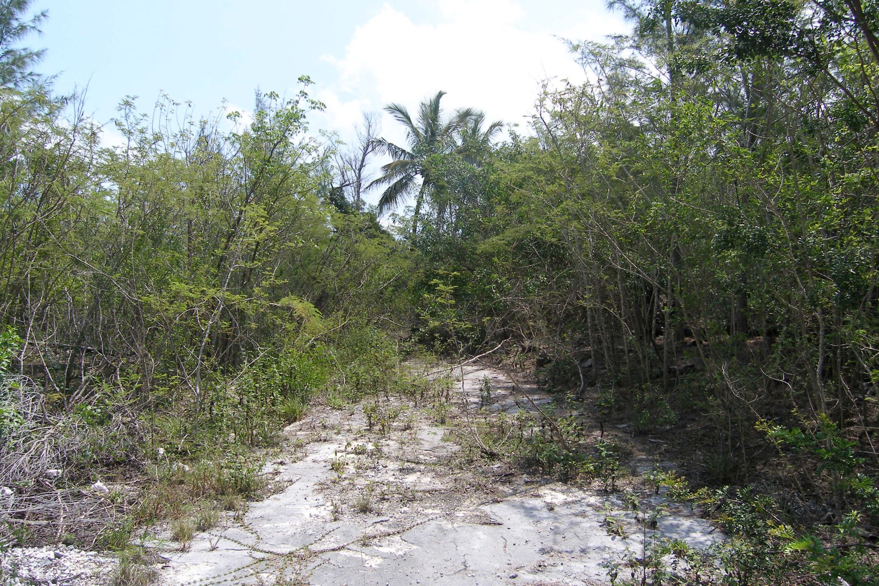 Additional photo for property listing at Residential Lot Close to a Marina Wemyss Bight, 伊路瑟拉 巴哈马
