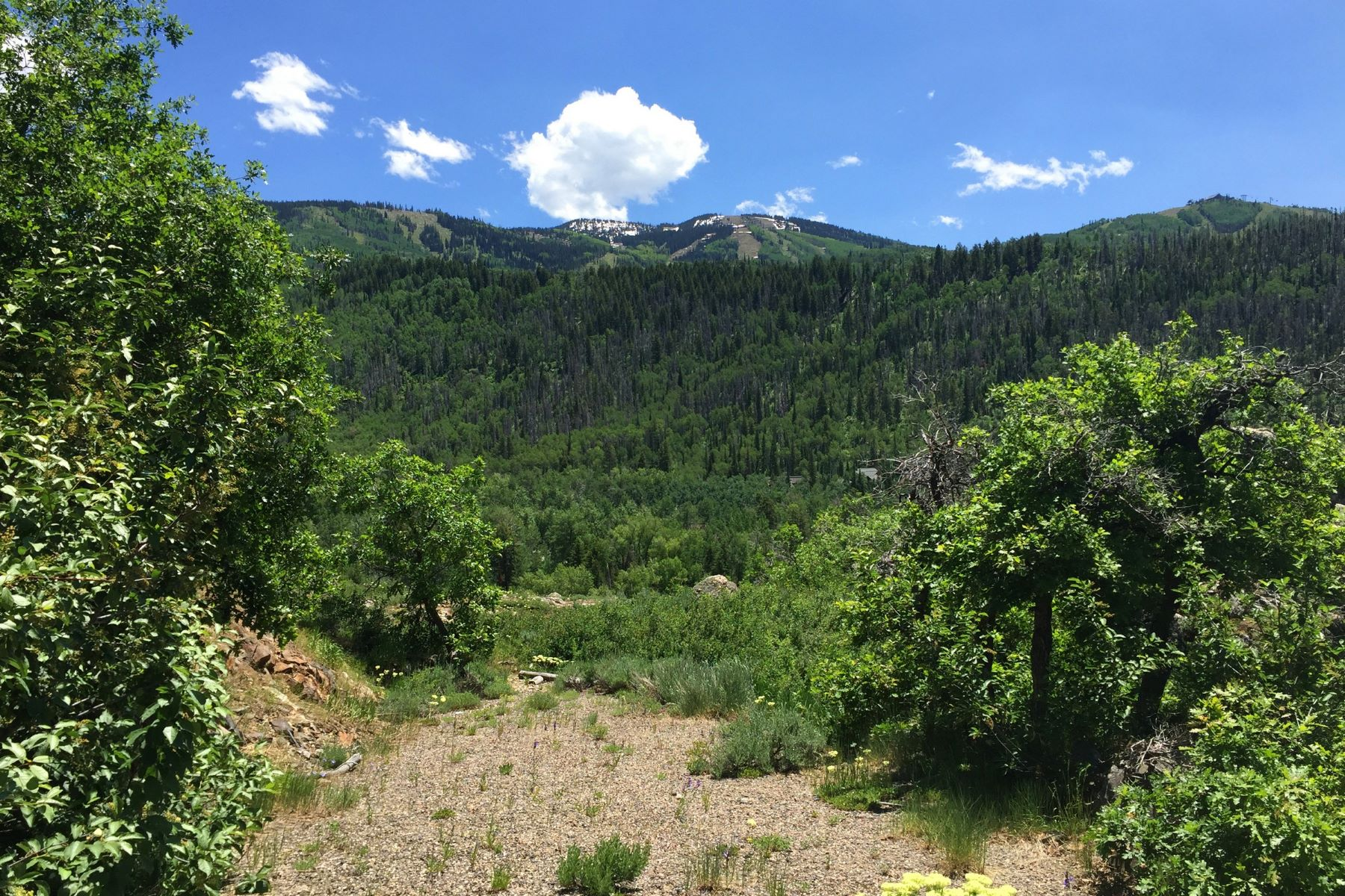 Additional photo for property listing at Heavenly View Lot 2815 Heavenly View Steamboat Springs, Colorado 80487 États-Unis