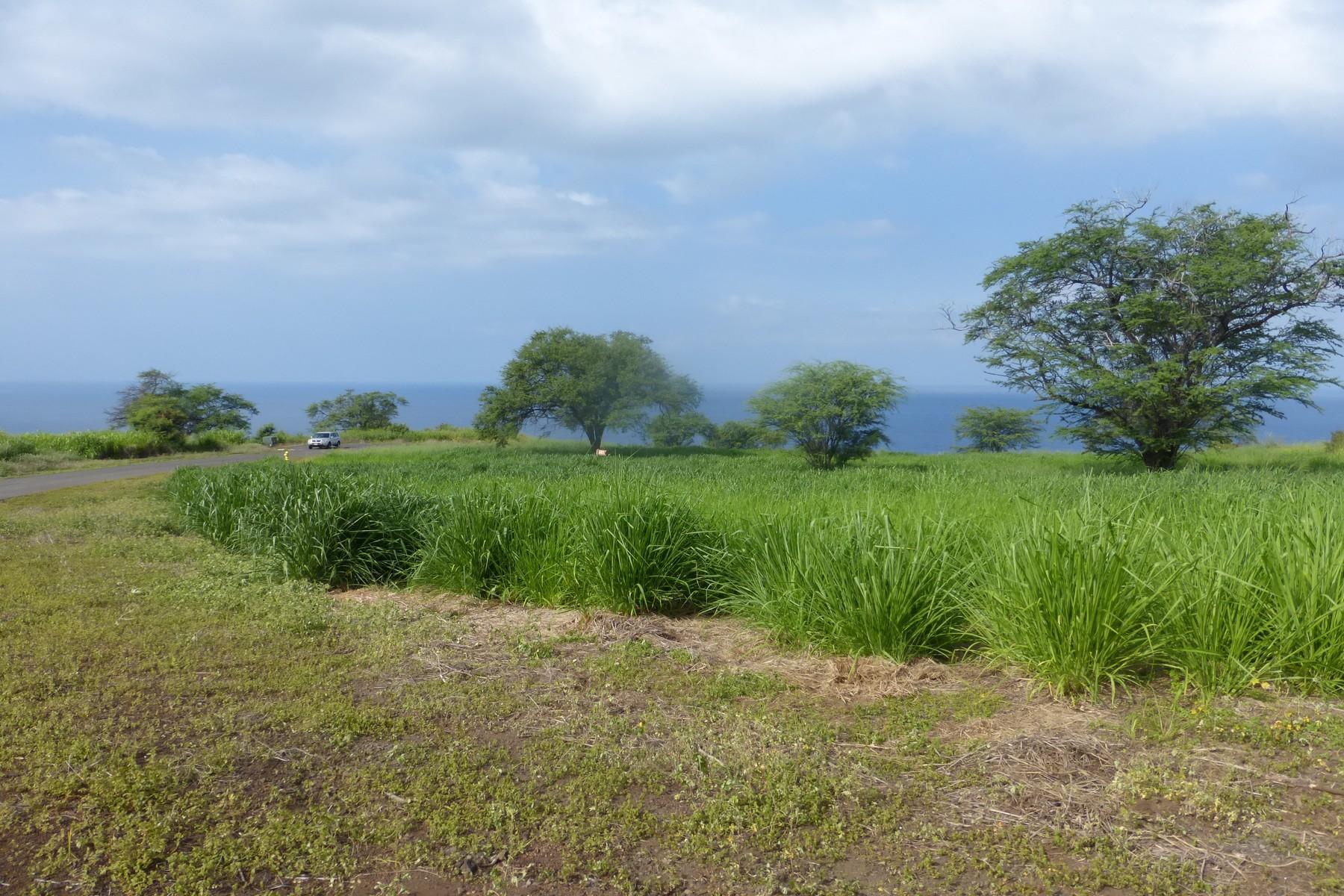 Земля для того Продажа на Hokuli'a Phase 1 81-6559 Mau Pa Way Kealakekua, Гавайи, 96750 Соединенные Штаты