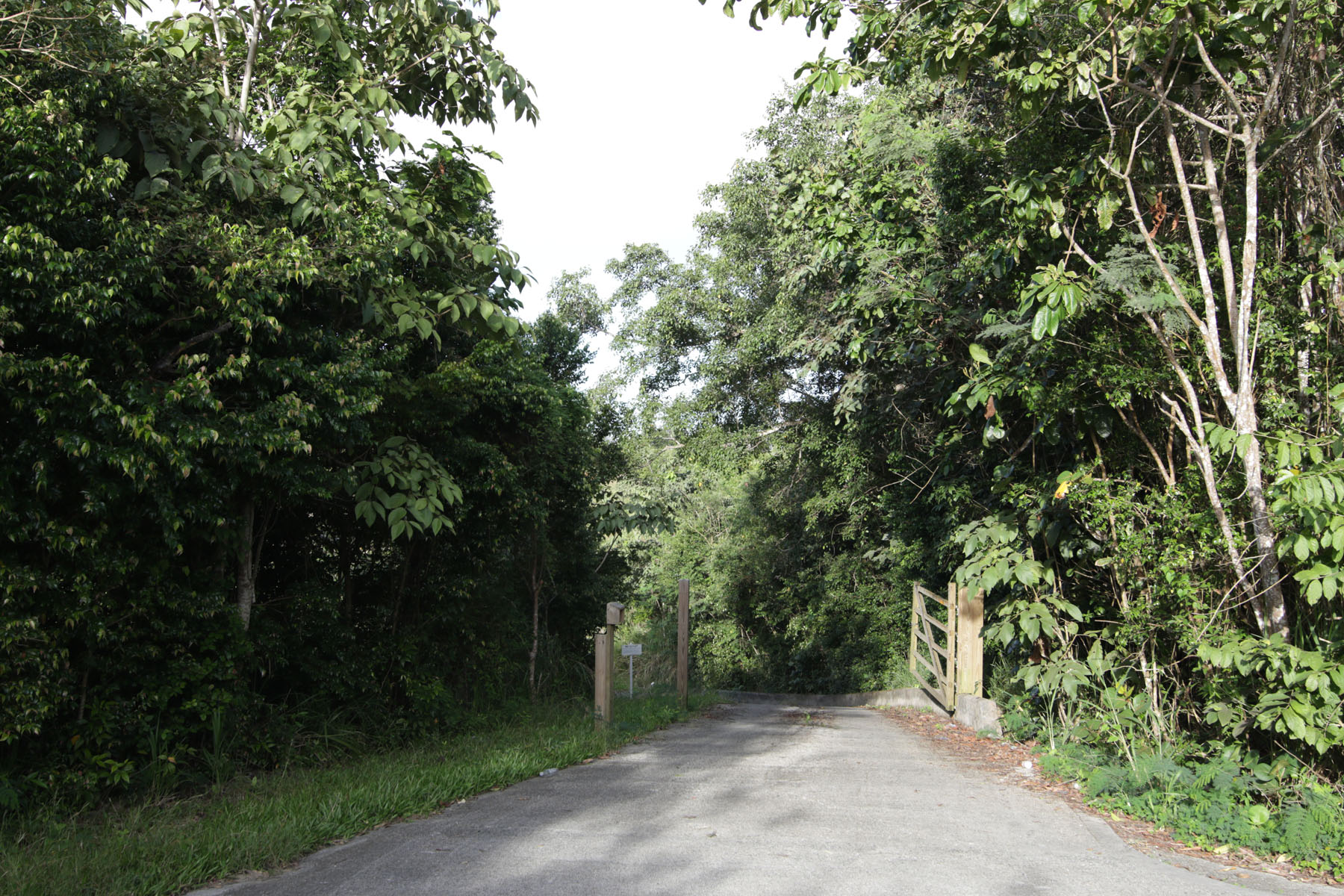 Land for Sale at Greenbanks Land Other Tortola, Tortola British Virgin Islands