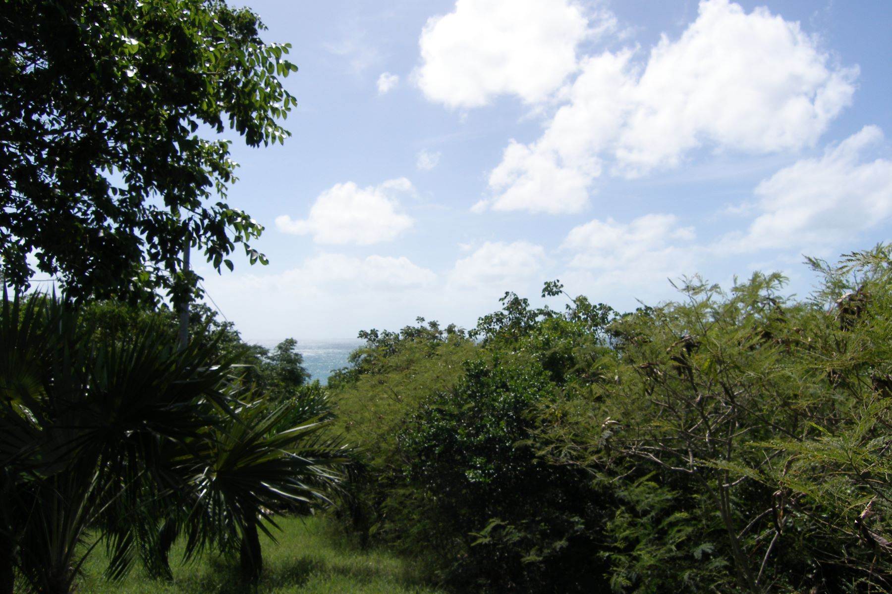 Additional photo for property listing at Palmetto Shores Lot Palmetto Point, Eleuthera Bahamas