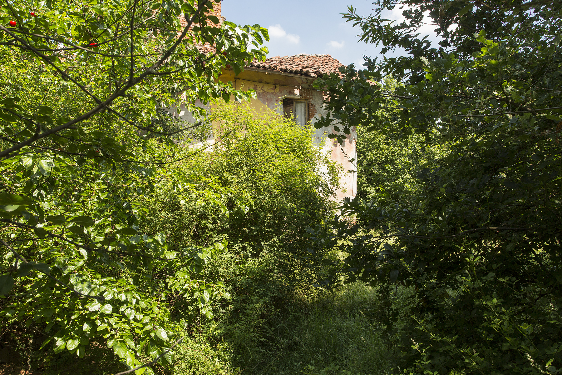 Additional photo for property listing at Farmhouse in the Gavi hills Strada di Monterotondo Gavi Novi Ligure, Alessandria 15060 Italie