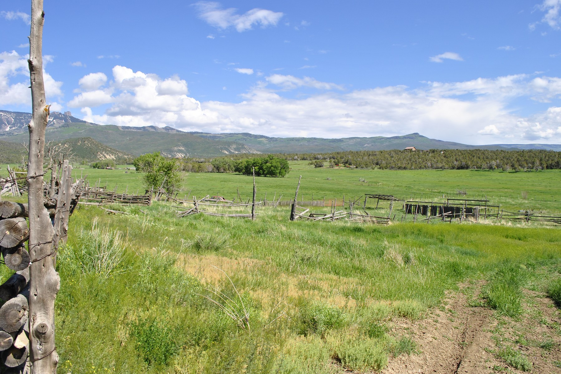 Additional photo for property listing at Clear Fork Ranch 1633 Clear Fork Road 克劳福德, 科罗拉多州 81415 美国