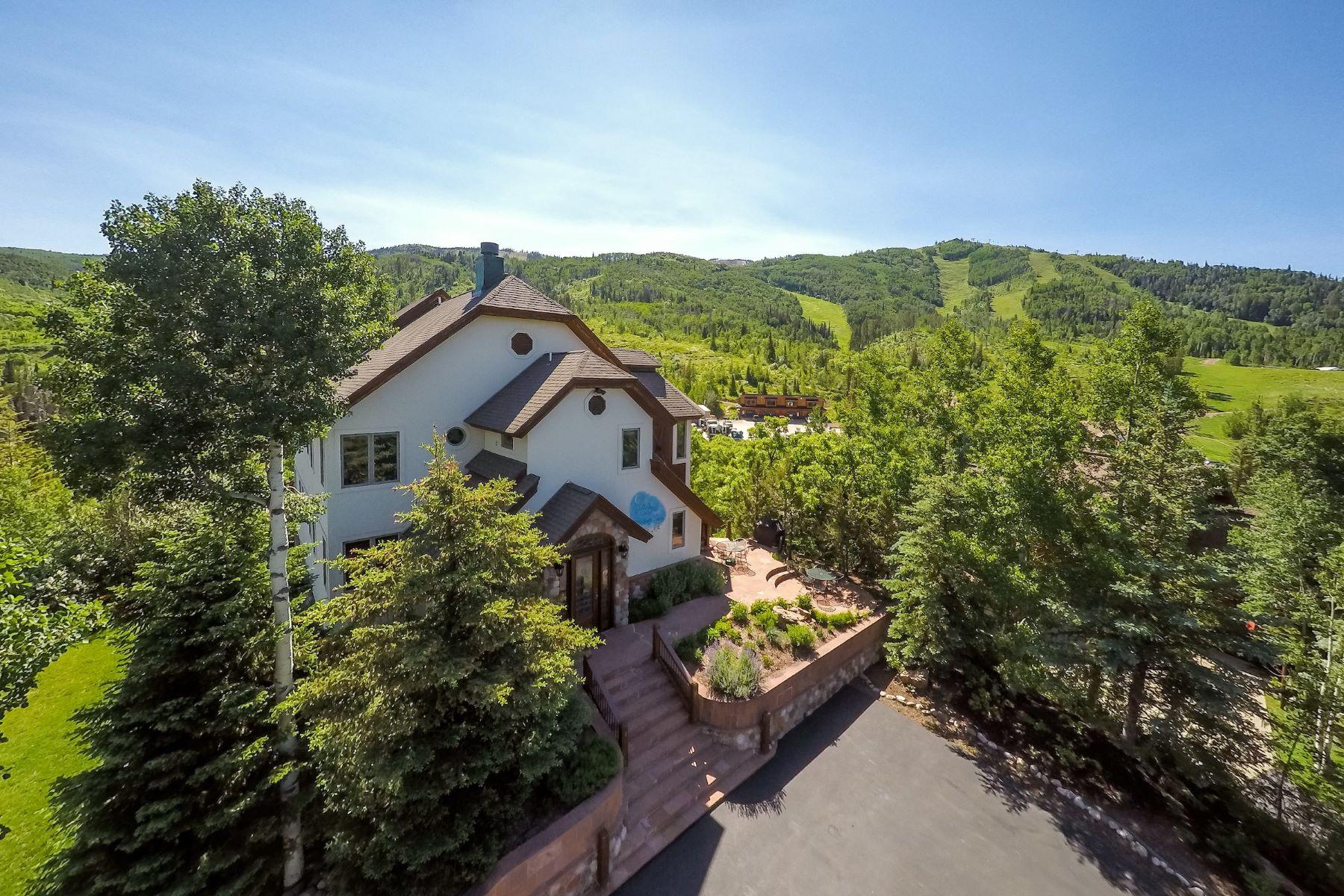 Casa para uma família para Venda às Edelweiss Chalet 3040 Temple Knoll Steamboat Springs, Colorado, 80487 Estados Unidos