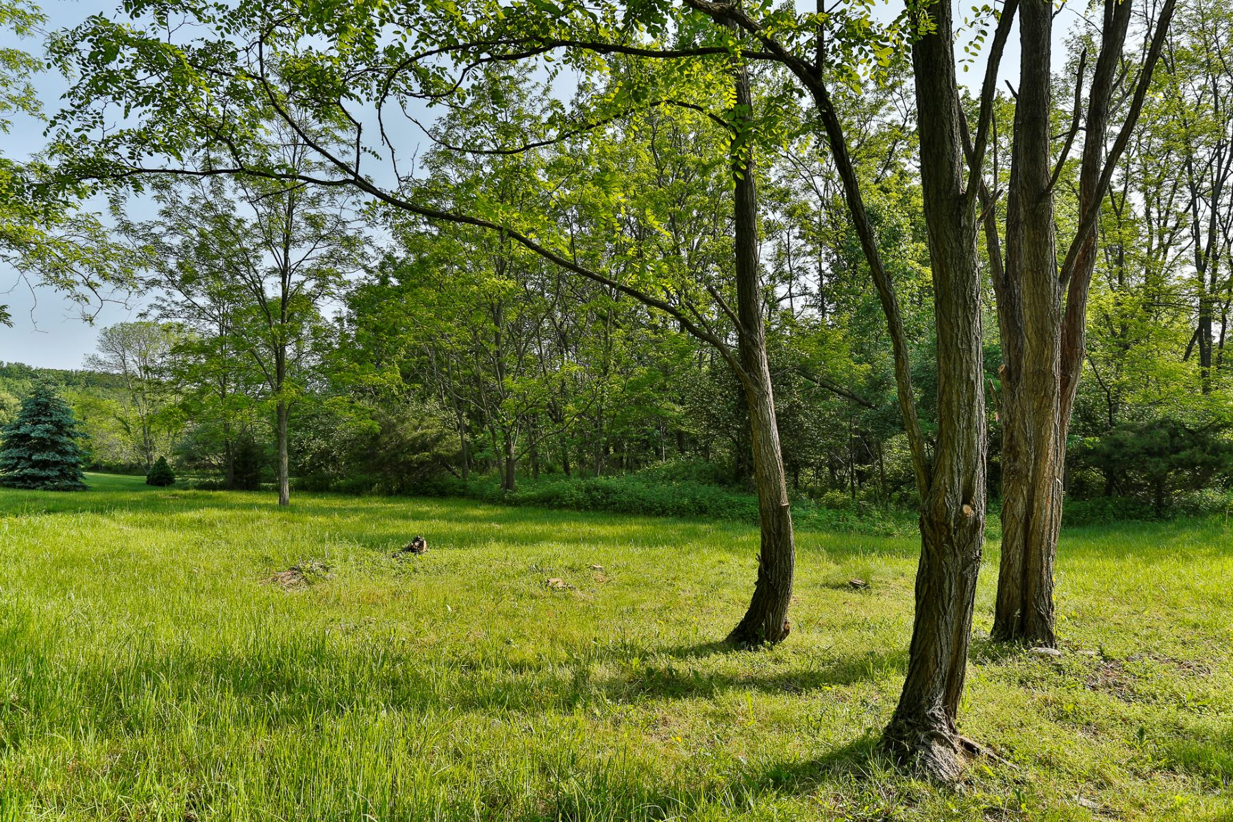 Additional photo for property listing at Ready to Build Lot in Lawrence Township 16 Buckingham Drive Princeton, New Jersey 08540 United States