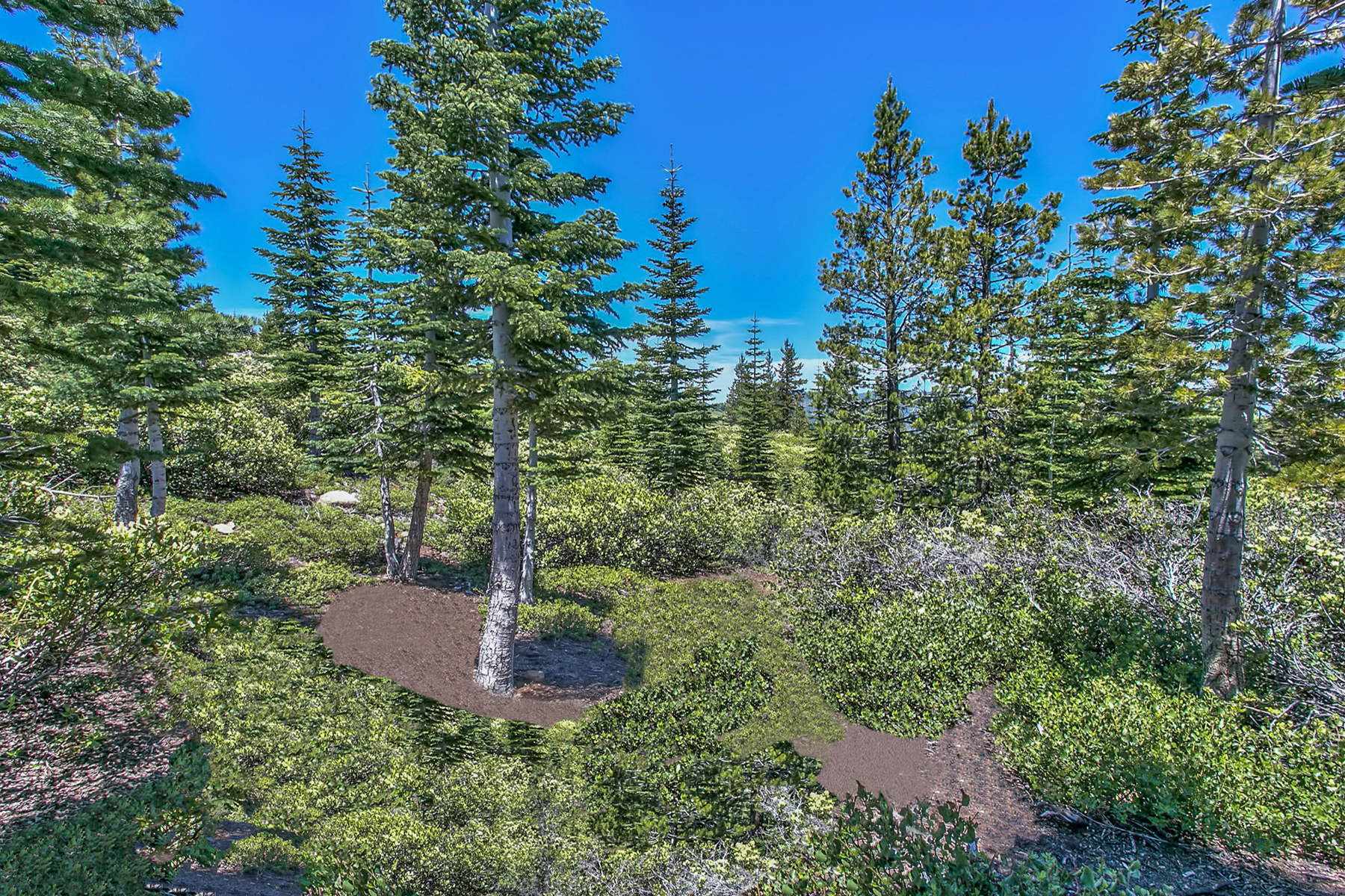 Additional photo for property listing at 15092 Skislope 15092 Skislope Way Truckee, California 96161 Estados Unidos
