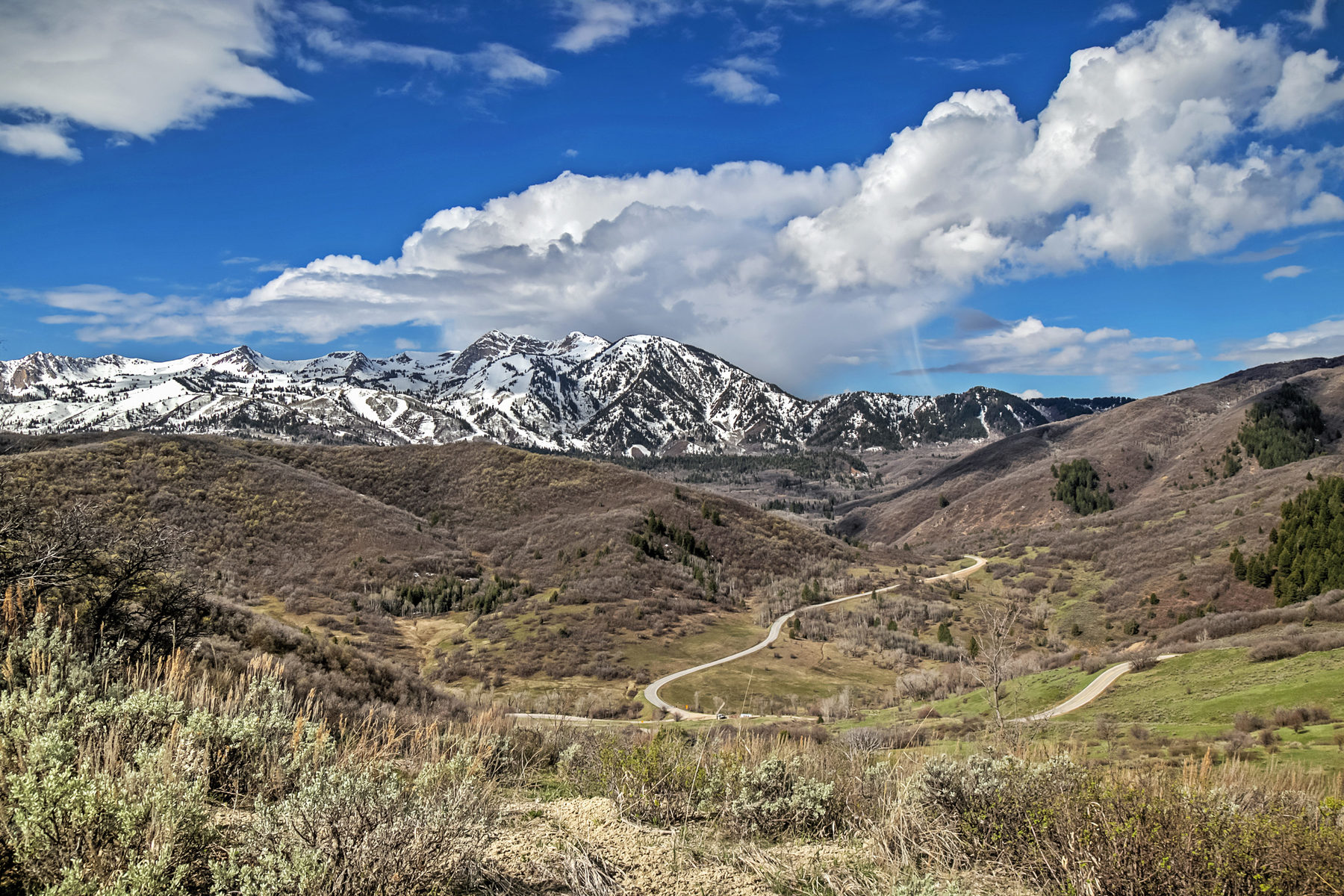 Земля для того Продажа на Most Spectacular View Lots in the Wasatch Range 5575 E Sundance Cir Lot 4 Huntsville, Юта, 84317 Соединенные Штаты