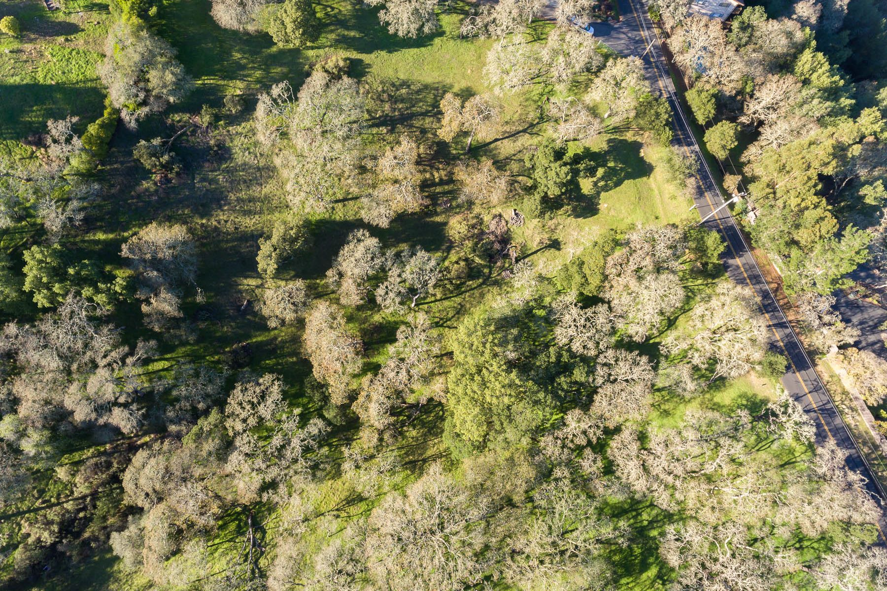 Additional photo for property listing at Vacant Lot in Greenpoint APN 143-370-41 Novato, California 94949 United States