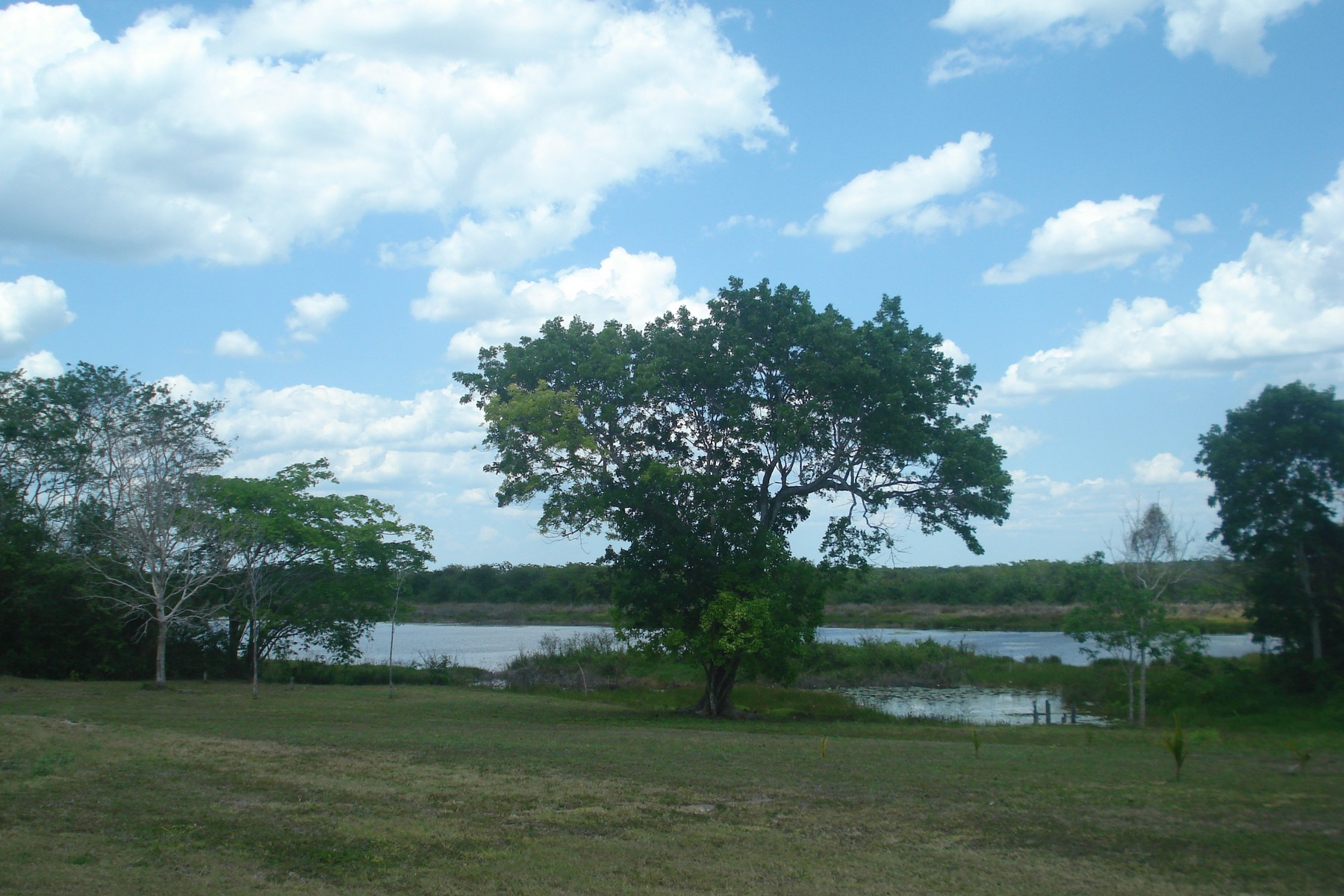 Land for Sale at LOT 1 IN THE HEART OF MAYAN ZONE New Loria, Othon P. Blanco Felipe Carrillo Puerto, 77160 Mexico