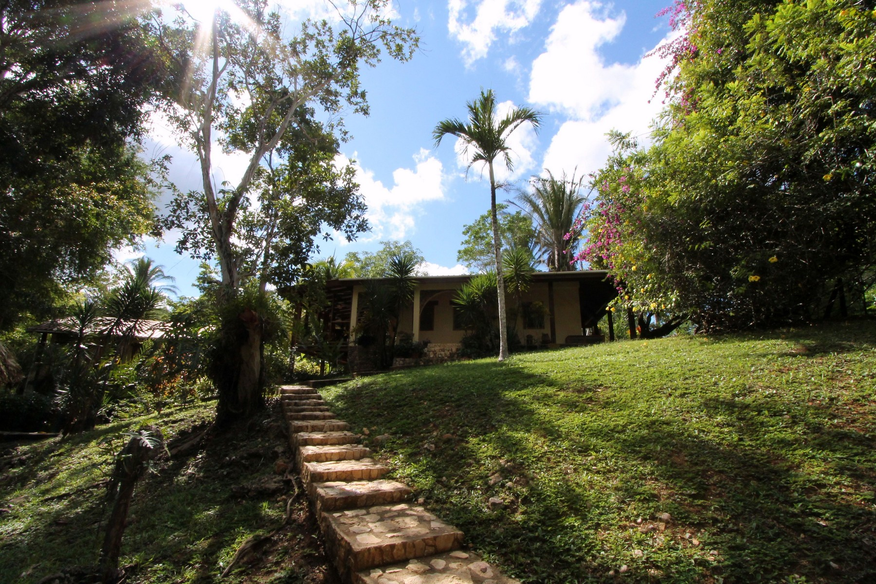 Additional photo for property listing at Wilson Farm Other Cayo, Cayo Belize