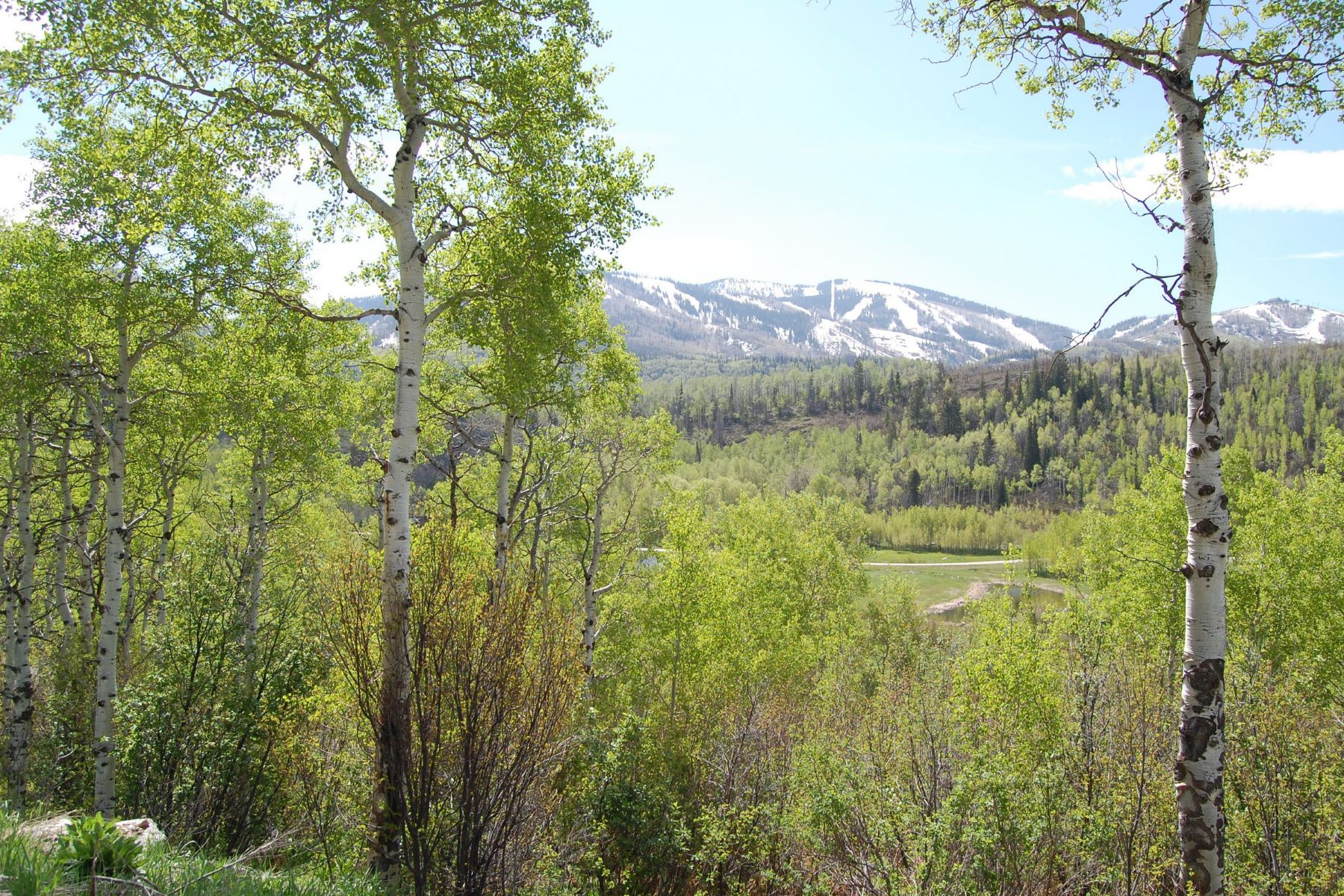 Additional photo for property listing at Fish Creek Falls Lot 2700 County Road 32 Steamboat Springs, Colorado 80487 United States