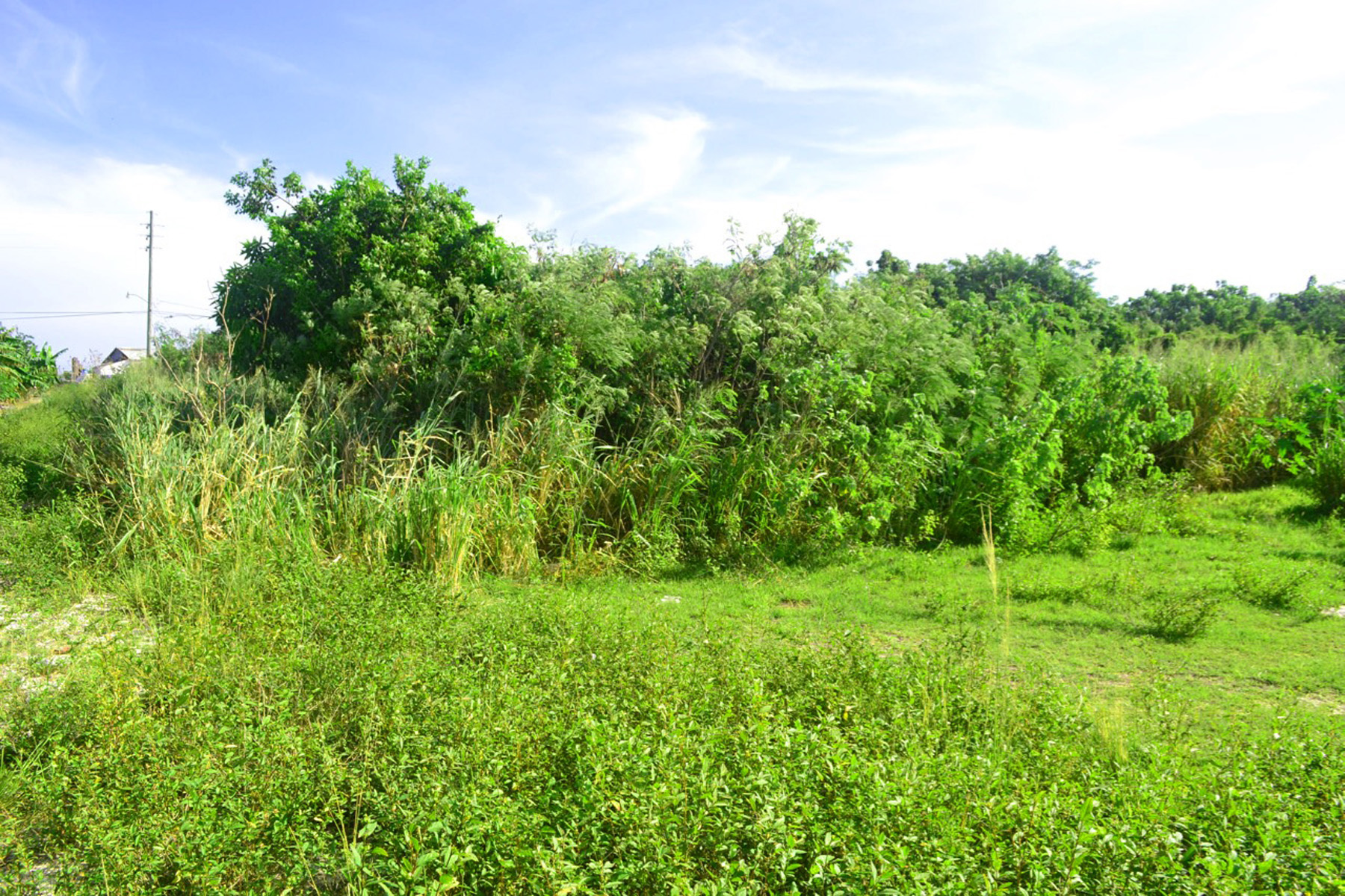 Additional photo for property listing at Russell Island South Vacant Lots Russell Island, Spanish Wells, Eleuthera Bahamas