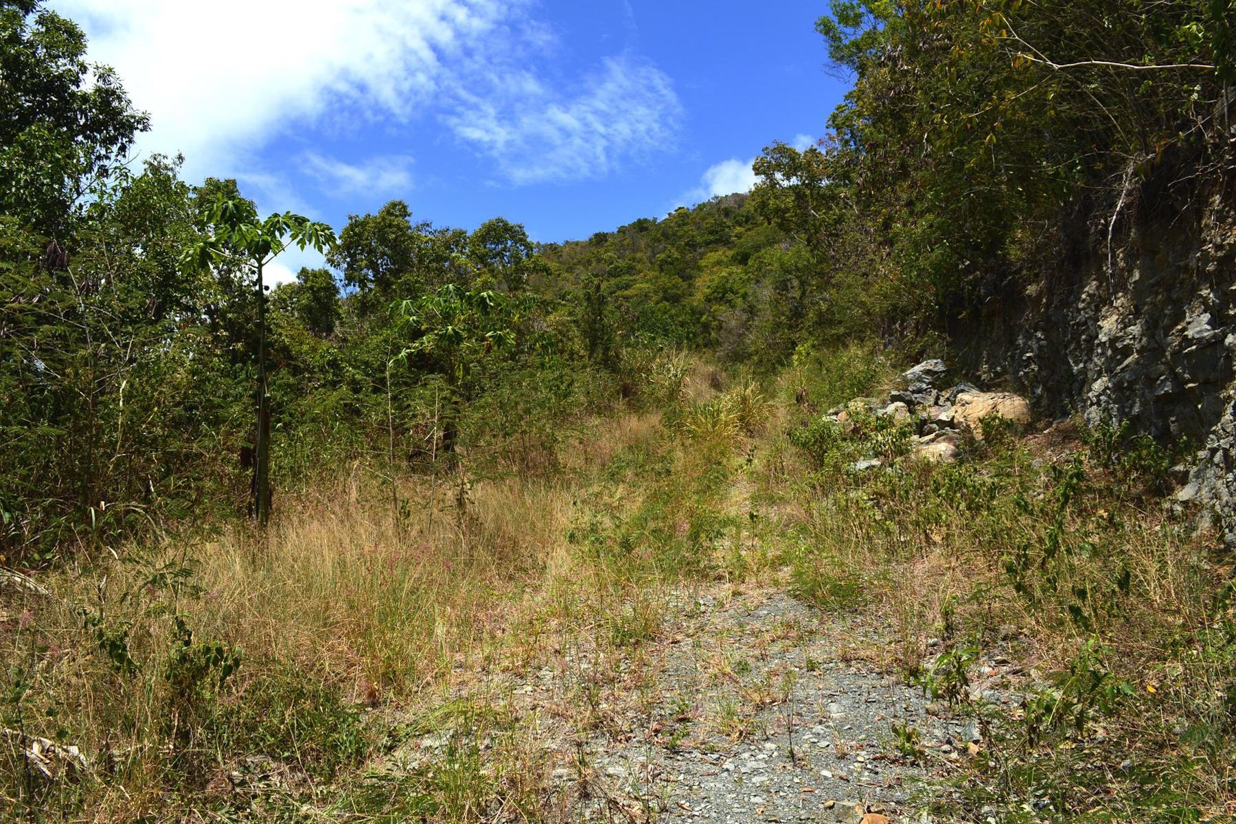 Additional photo for property listing at Havers Hilltop Parcels Havers, Tortola British Virgin Islands