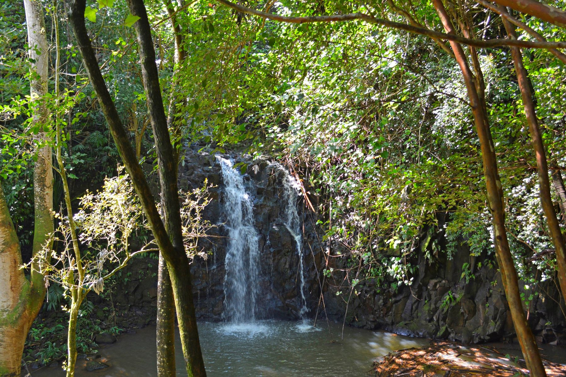Additional photo for property listing at Tropical Waterfall Estate Kuhio Hwy. Kilauea, Hawaii 96754 United States