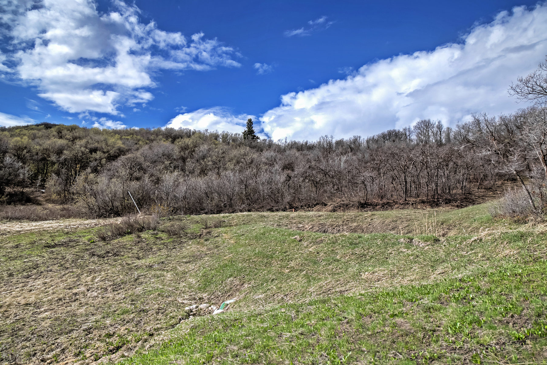 Additional photo for property listing at Most Spectacular View Lots in the Wasatch Range 5605 E Sundance Cir Lot 3 亨茨维尔, 犹他州 84317 美国