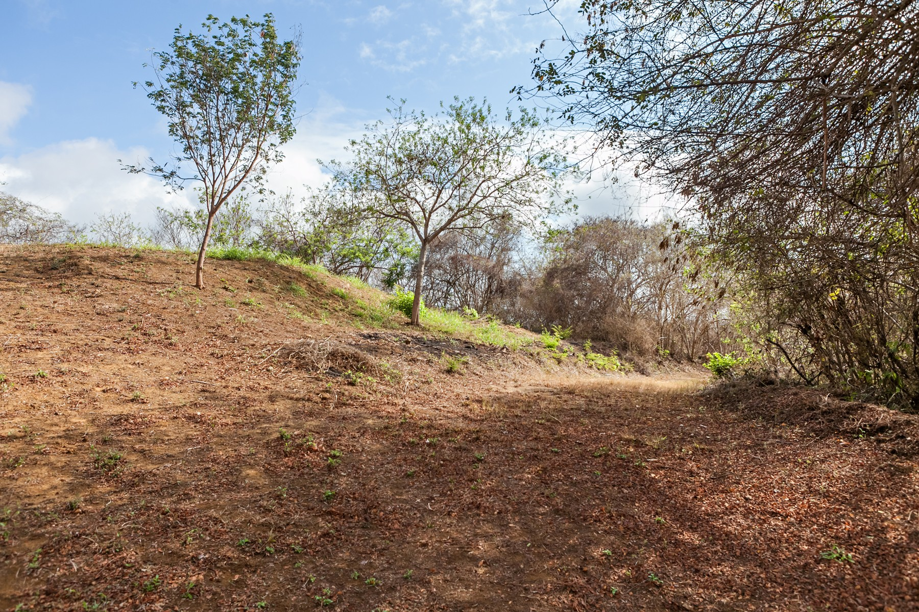Additional photo for property listing at El Malinal Lot, Litibu, Punta Mita Litibu, Riviera Nayarit Punta De Mita, Nayarit 63734 Mexico