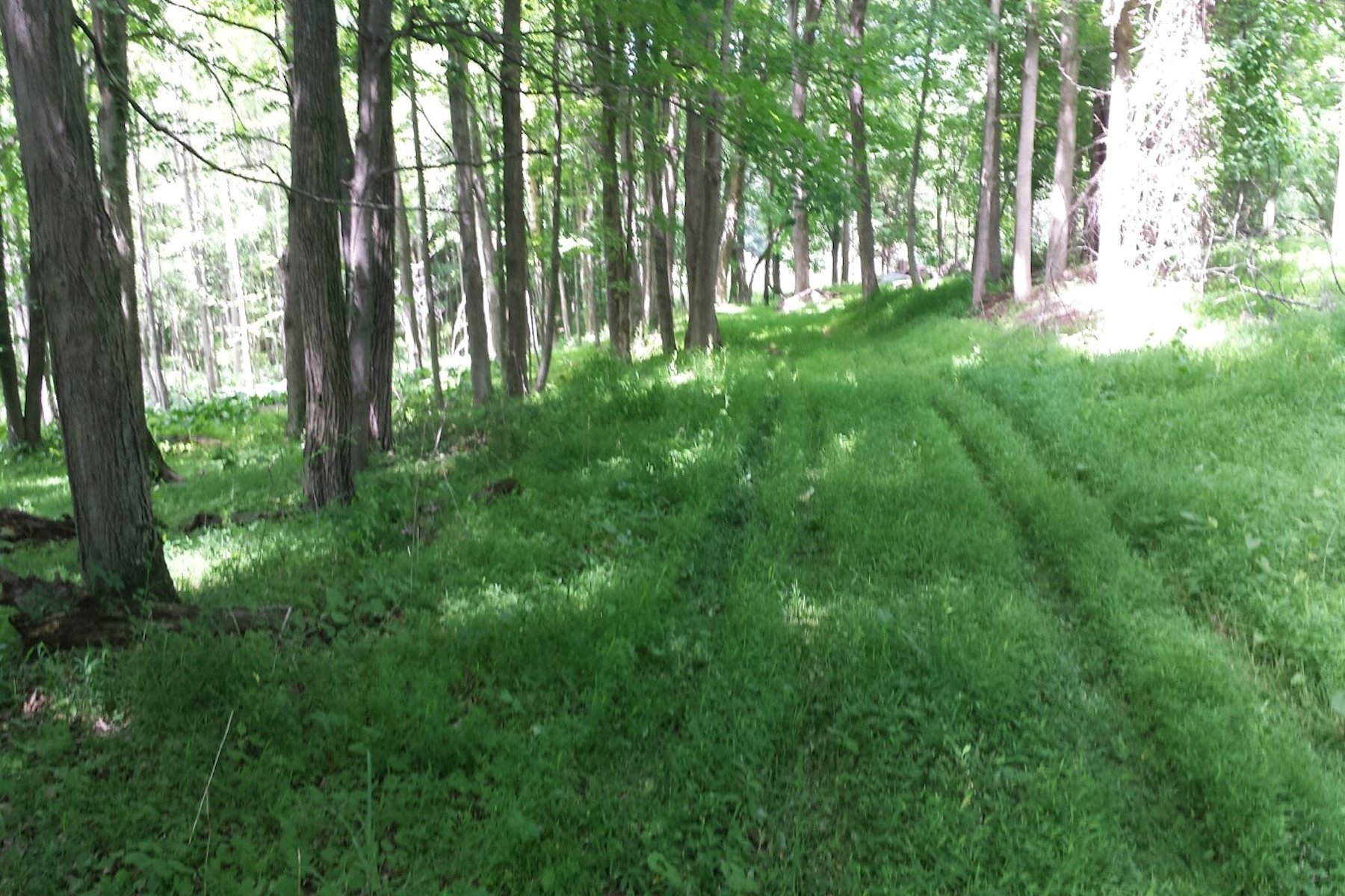Land for Sale at Private & Peaceful 139 Ackert Hook Road Rhinebeck, New York 12572 United States