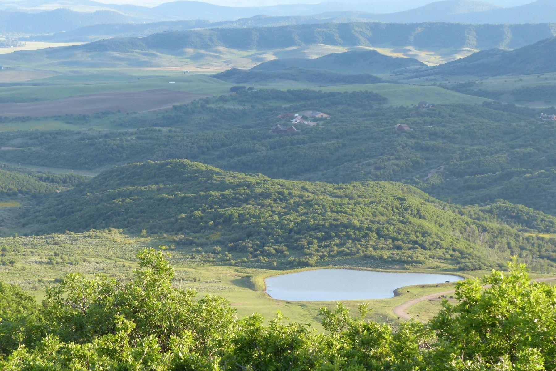 Land for Sale at Four Seasons Preserve at Elk Mtn 45233 Four Seasons Way Lot 10, Four Seasons Preserve at Elk Mtn Steamboat Springs, Colorado 80487 United States