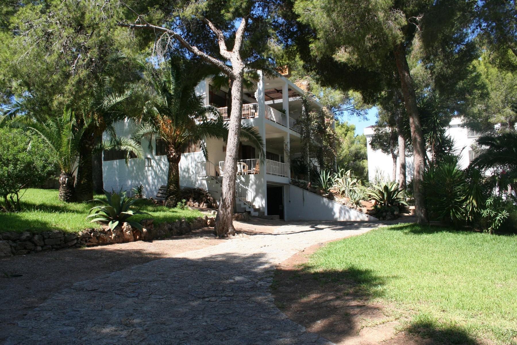 獨棟家庭住宅 為 出售 在 Villa on a large plot close to a small beach Santa Ponsa, 馬婁卡, 07180 西班牙