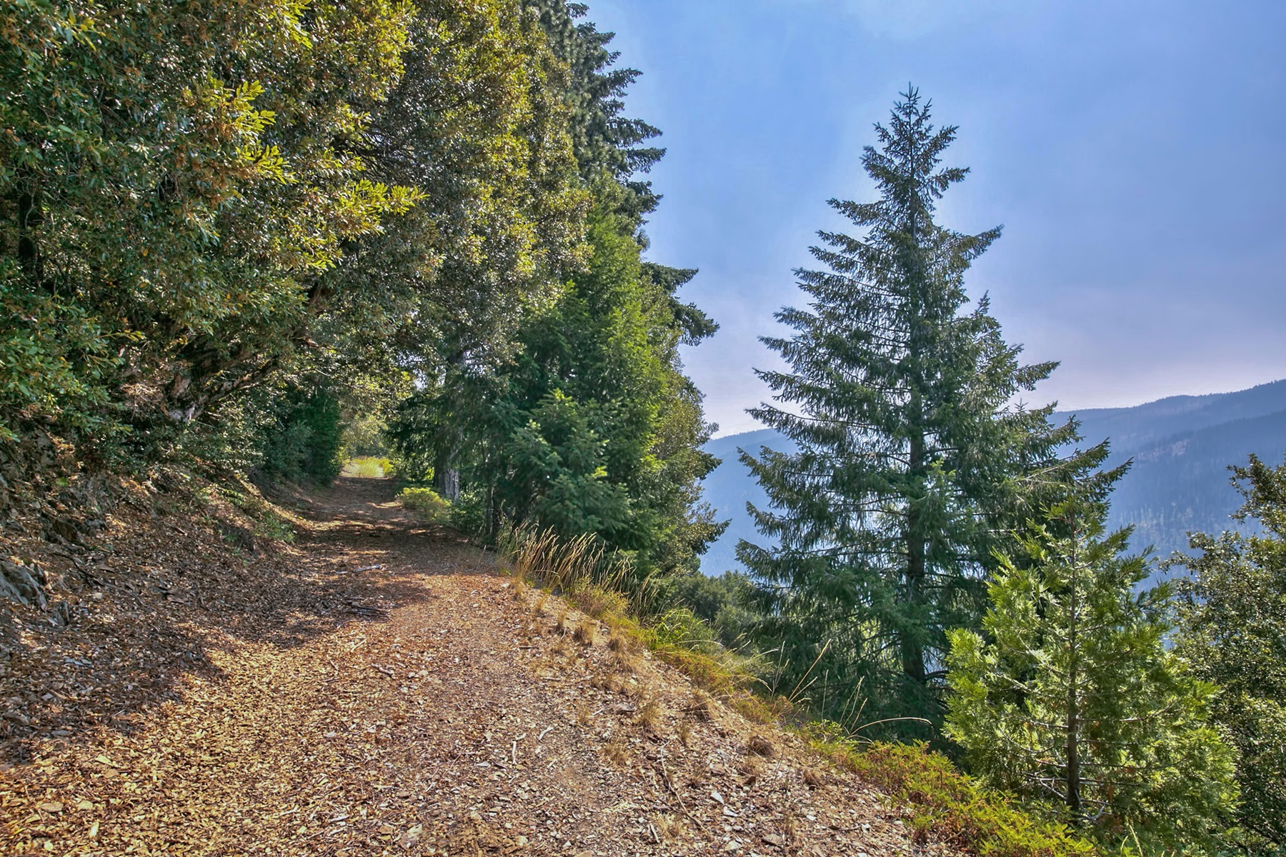 Additional photo for property listing at Sierra Buttes Road  Sierra City, California 96125 Estados Unidos
