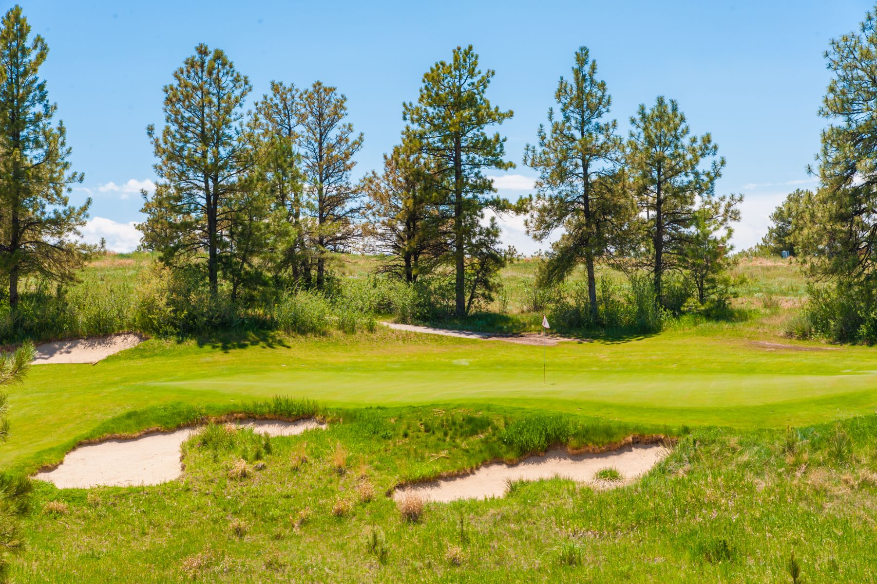 Additional photo for property listing at 7998 Forest Keep Circle 7998 Forest Keep Circle Parker, Colorado 80134 United States