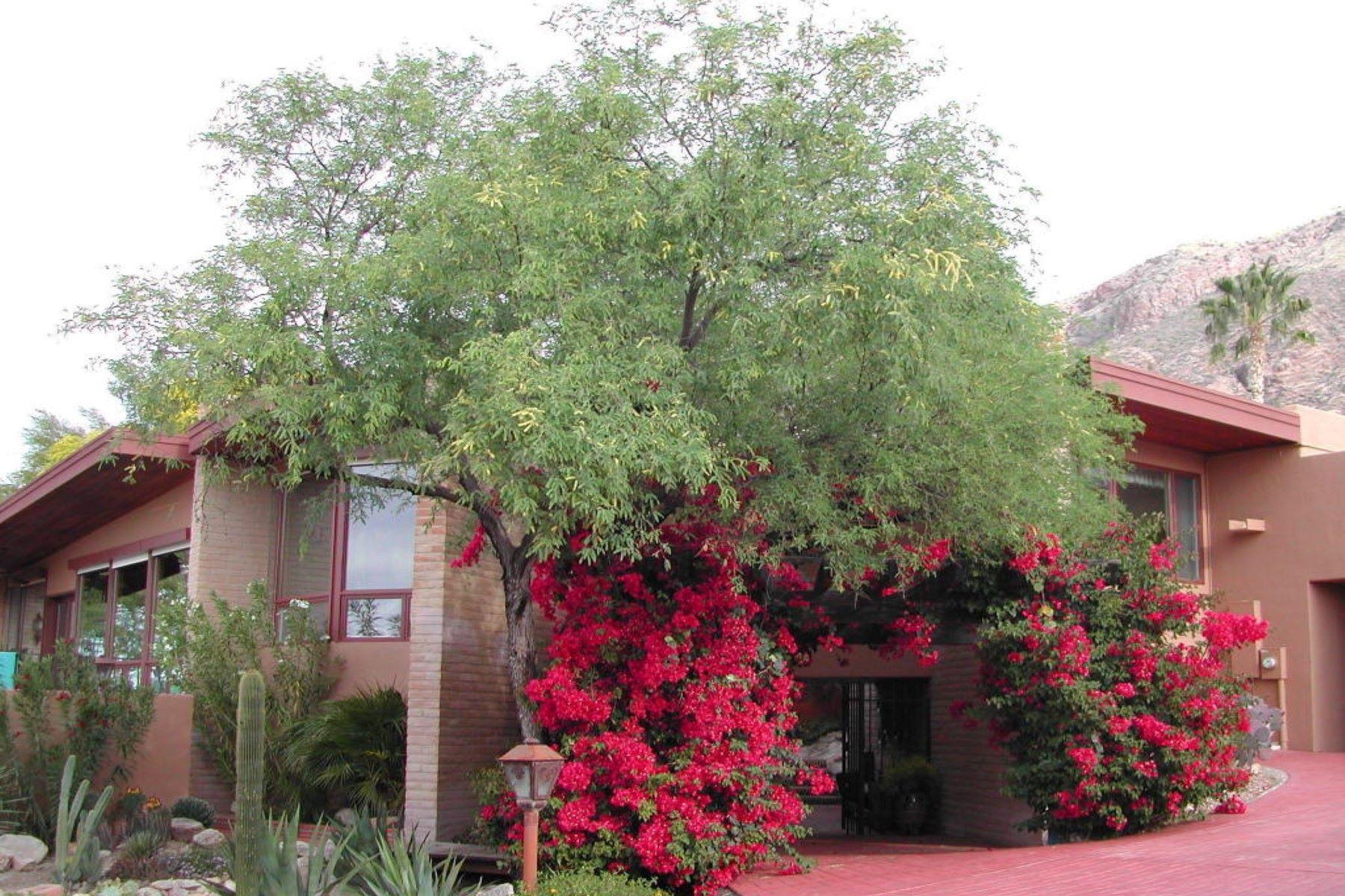 Tài Sản Bán Tucson