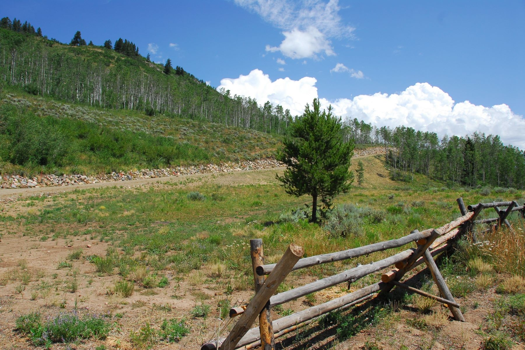 Additional photo for property listing at Seed House Ranch 56265 Zirkel View Lane Clark, Colorado 80428 United States