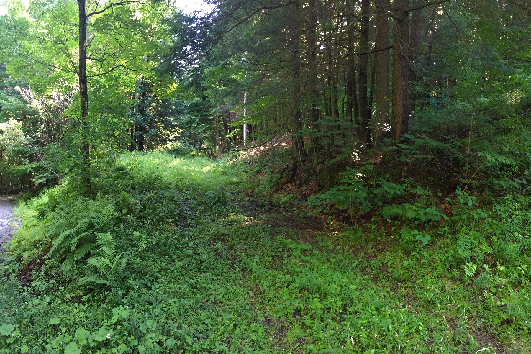Land for Sale at Several Possible Building Sites 1 Starbuck Road Pomfret, Vermont 05067 United States