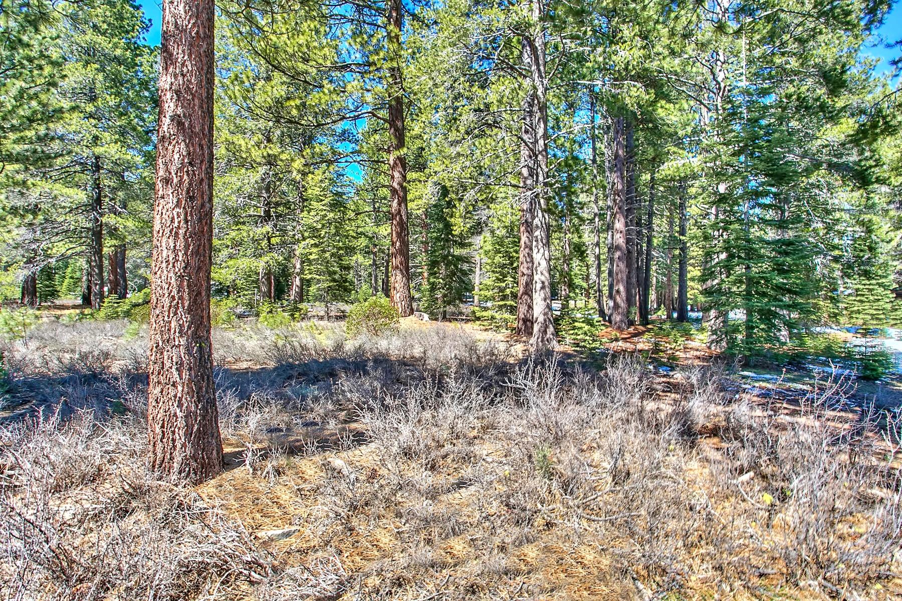 Additional photo for property listing at 11830 Bottcher Loop W57 11830 Bottcher Loop W57 特拉基, 加利福尼亚州 96161 美国