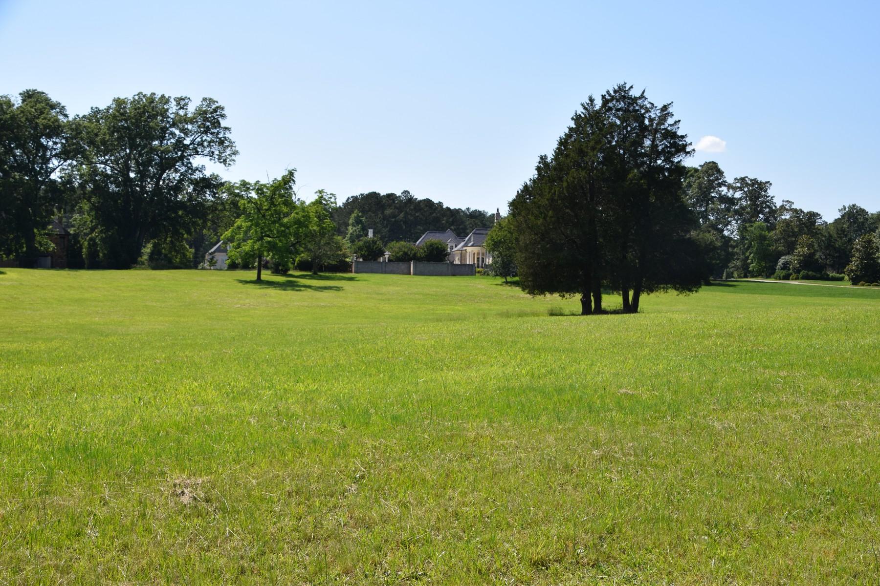 土地 为 销售 在 Bay Leaf Farm 12313 Birchfalls Drive 罗利, 北卡罗来纳州 27614 美国