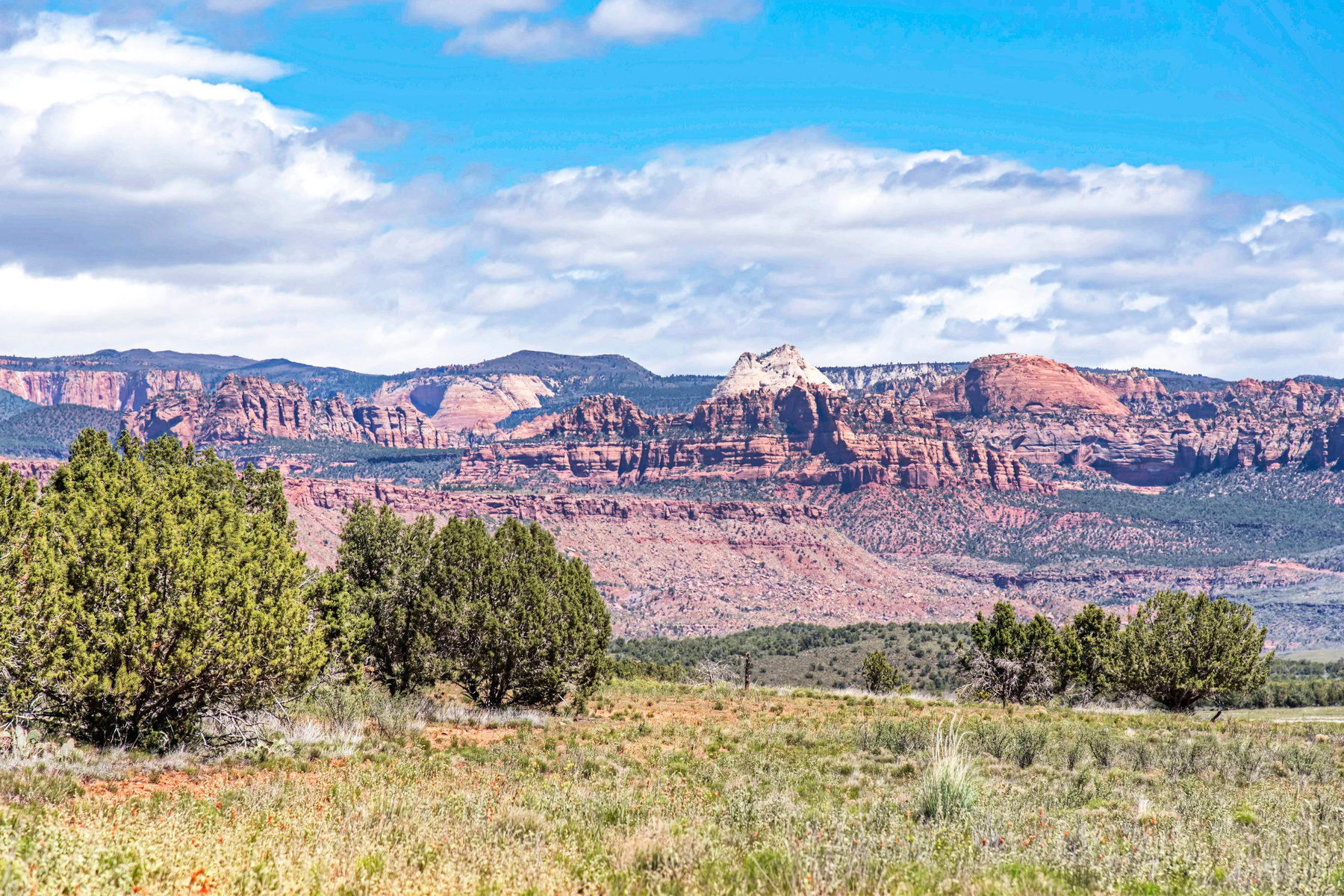 Additional photo for property listing at 100 Acre Retreat in Washington County next to Zion National Park 100 Acres Dalton Wash Rd Virgin, Utah 84779 États-Unis