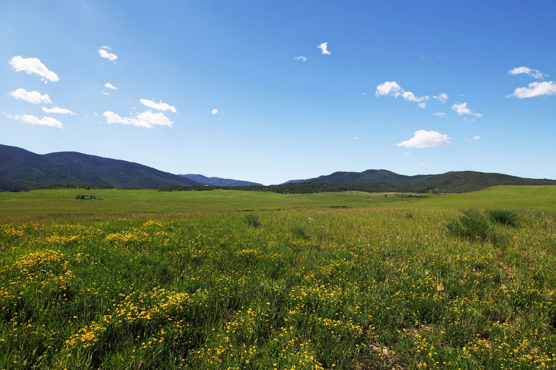 Land for Sale at 50+ Acres at Lake Catamount 31725 County Road 14C Steamboat Springs, Colorado 80487 United States